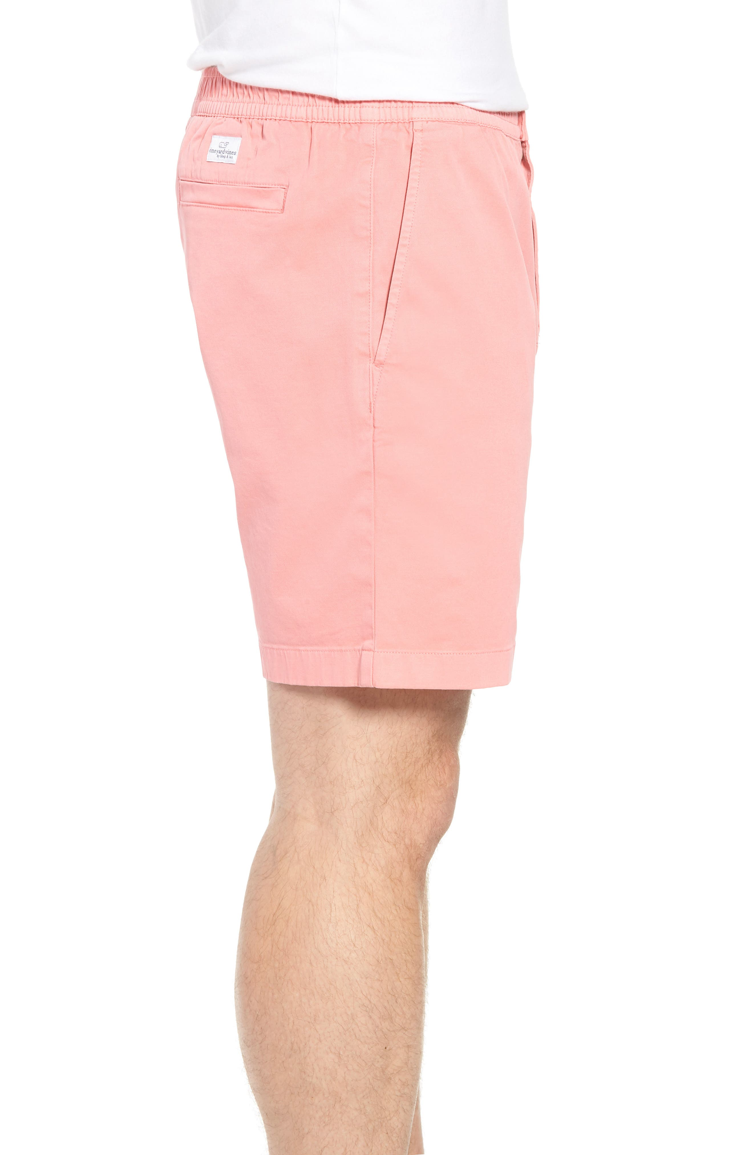 Jetty Stretch Cotton Shorts,                             Alternate thumbnail 3, color,                             Cape Coral