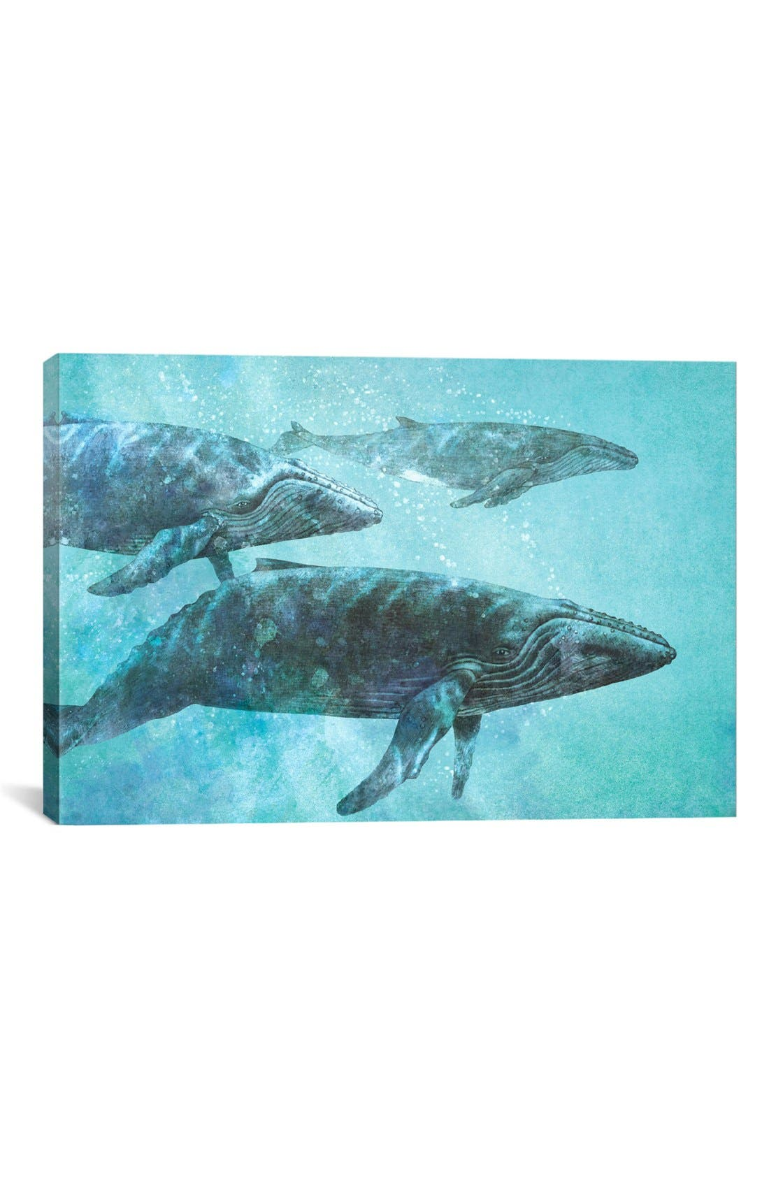 Alternate Image 1 Selected - iCanvas 'Pod - Terry Fan' Giclée Print Canvas Art