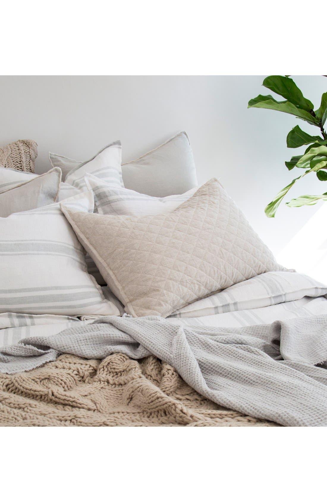 'Blair' Linen Euro Pillow Sham,                             Alternate thumbnail 2, color,                             Taupe