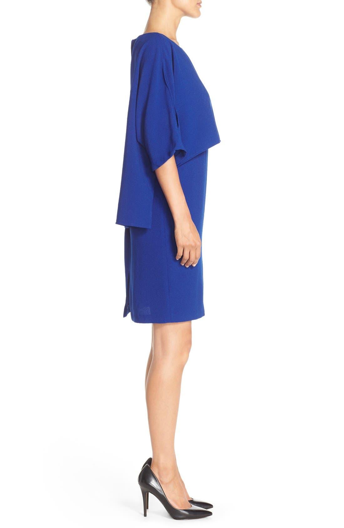 Alternate Image 3  - Adrianna Papell Draped Blouson Sheath Dress