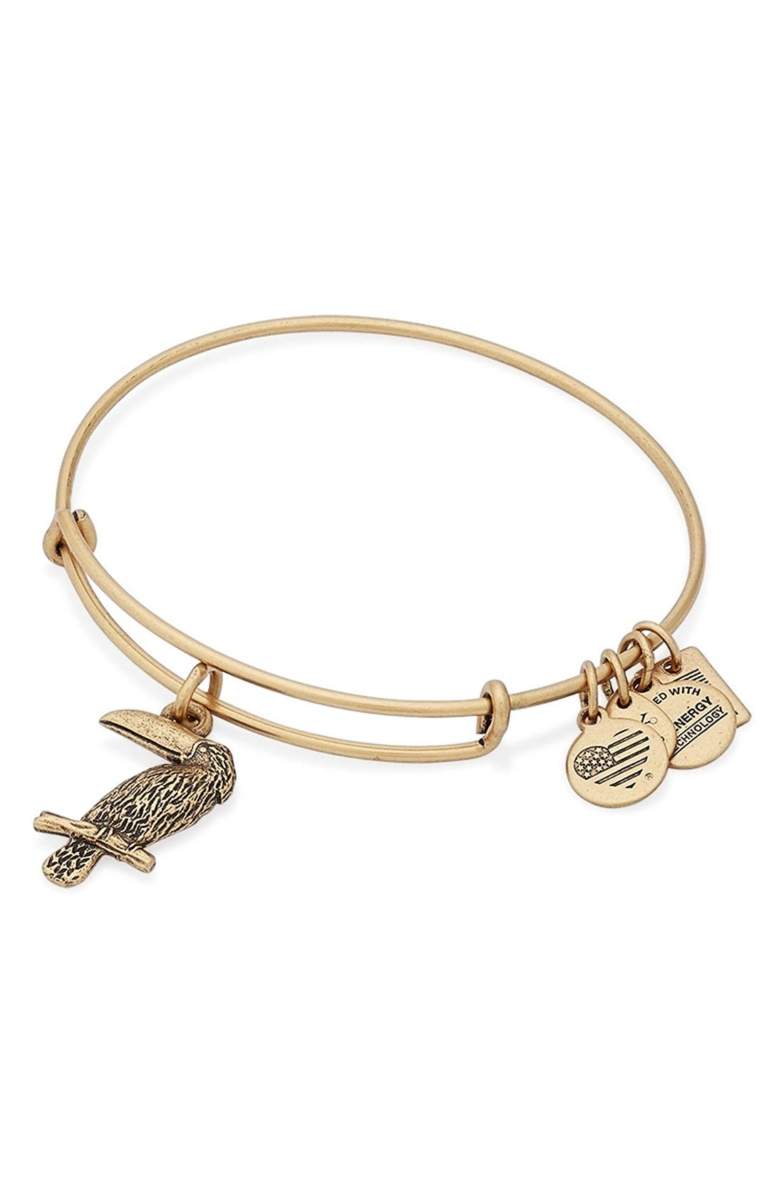 Alternate Image 2  - Alex and Ani 'Team USA - Toucan' Expandable Wire Bangle