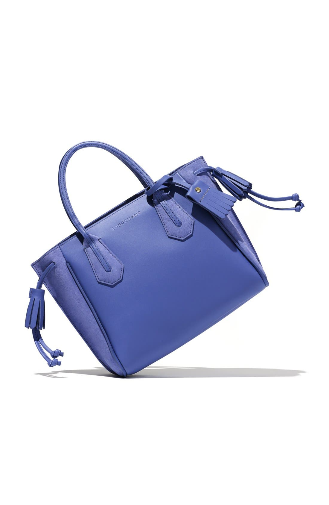 Alternate Image 6  - Longchamp 'Small Penelope Fantasie' Leather Tote