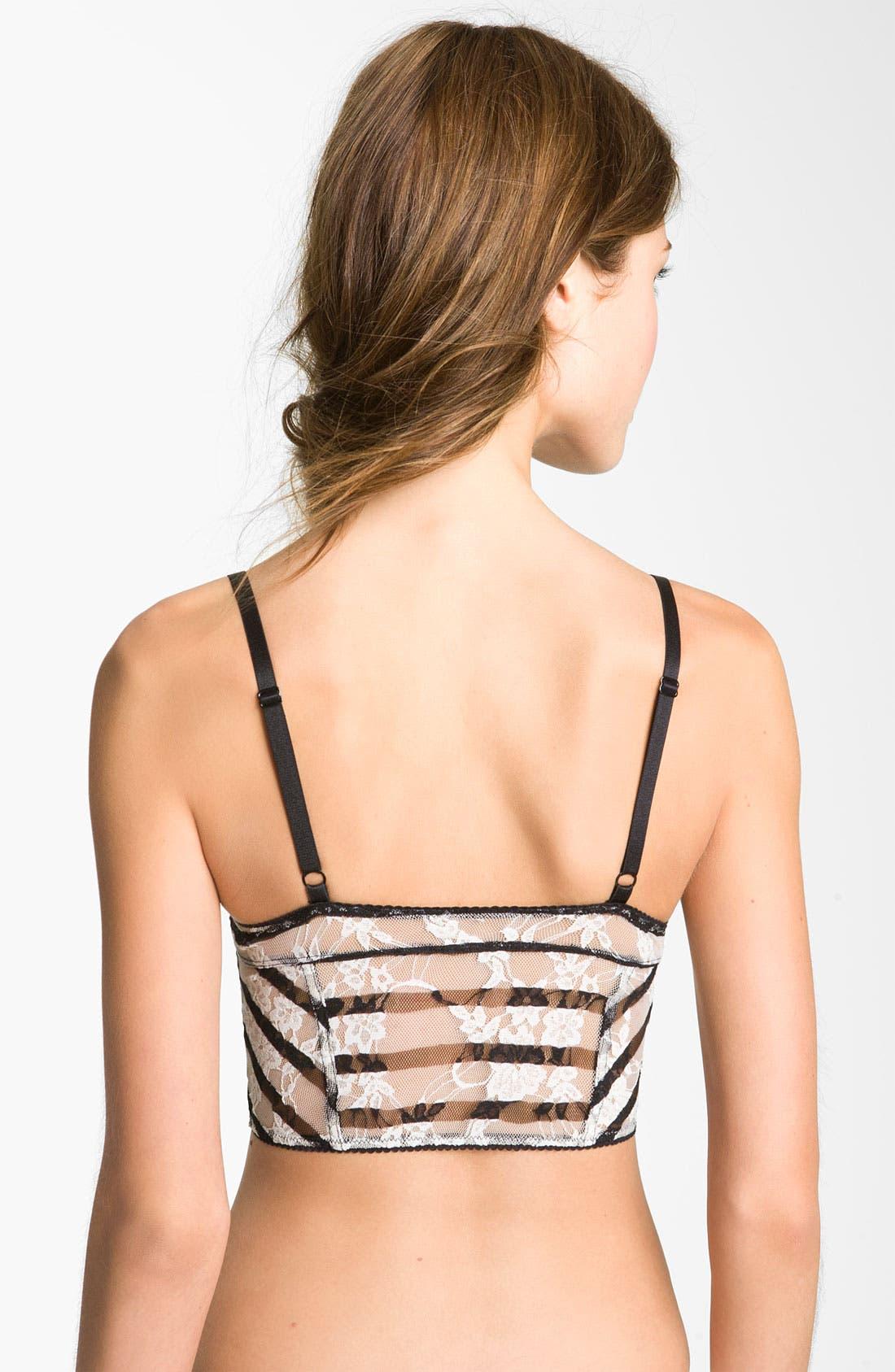 Alternate Image 2  - Free People Stripe Lace Crop Bra