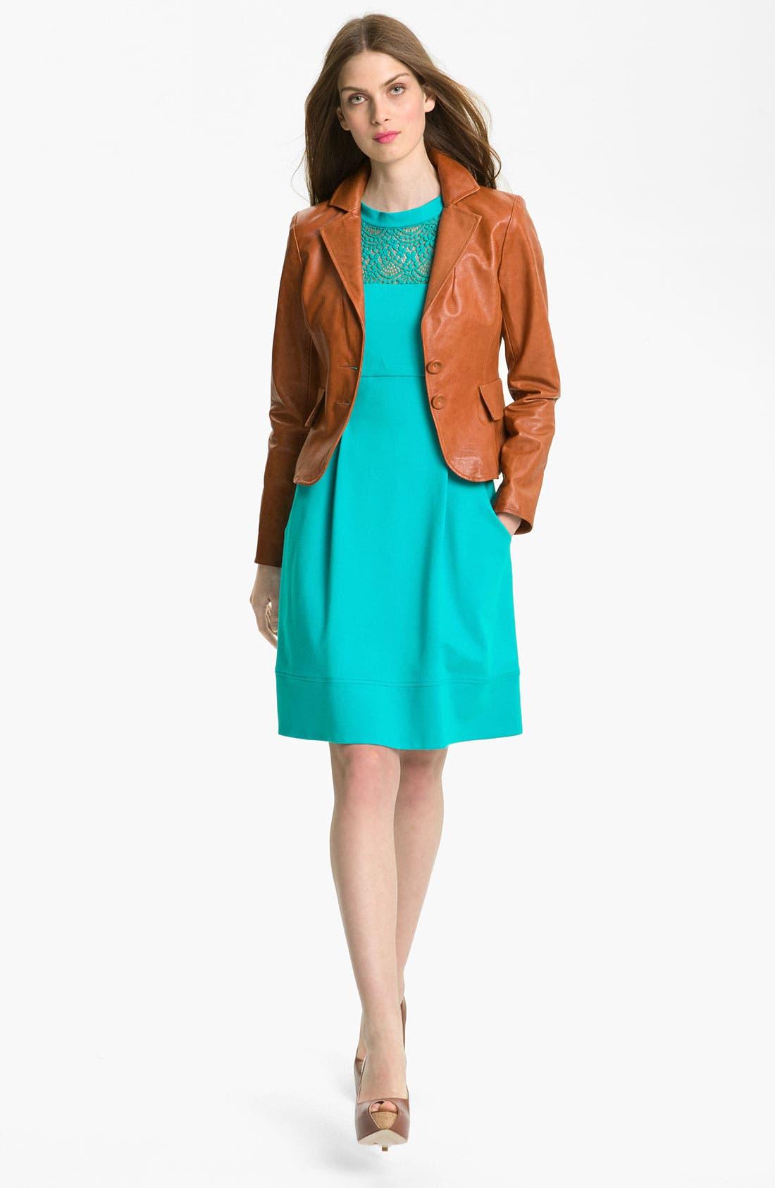 Alternate Image 4  - Nanette Lepore 'Shadow' Pleated Dress