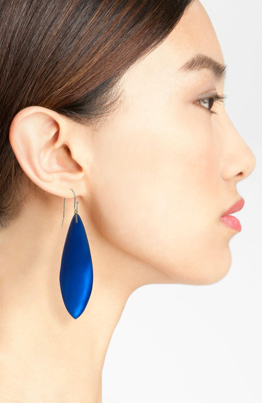 Alternate Image 2  - Alexis Bittar 'Lucite®' Long Leaf Statement Earrings