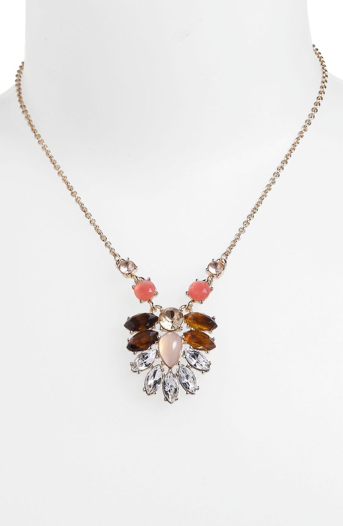 Alternate Image 2  - Anne Klein Cluster Pendant Necklace