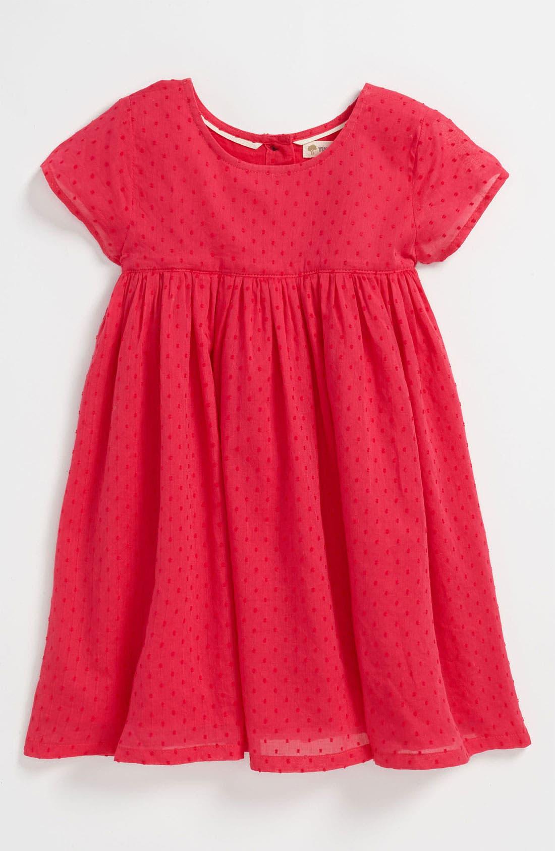 Main Image - Tucker + Tate 'Iris' Dress (Toddler)