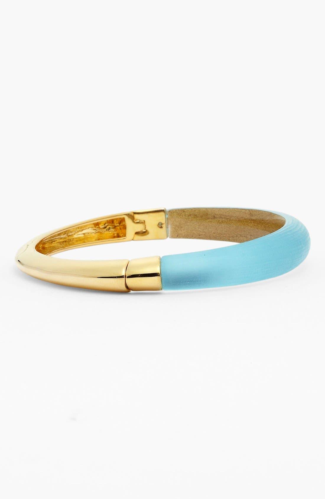 Alternate Image 2  - Alexis Bittar 'Lucite®' Skinny Tapered Hinged Bracelet