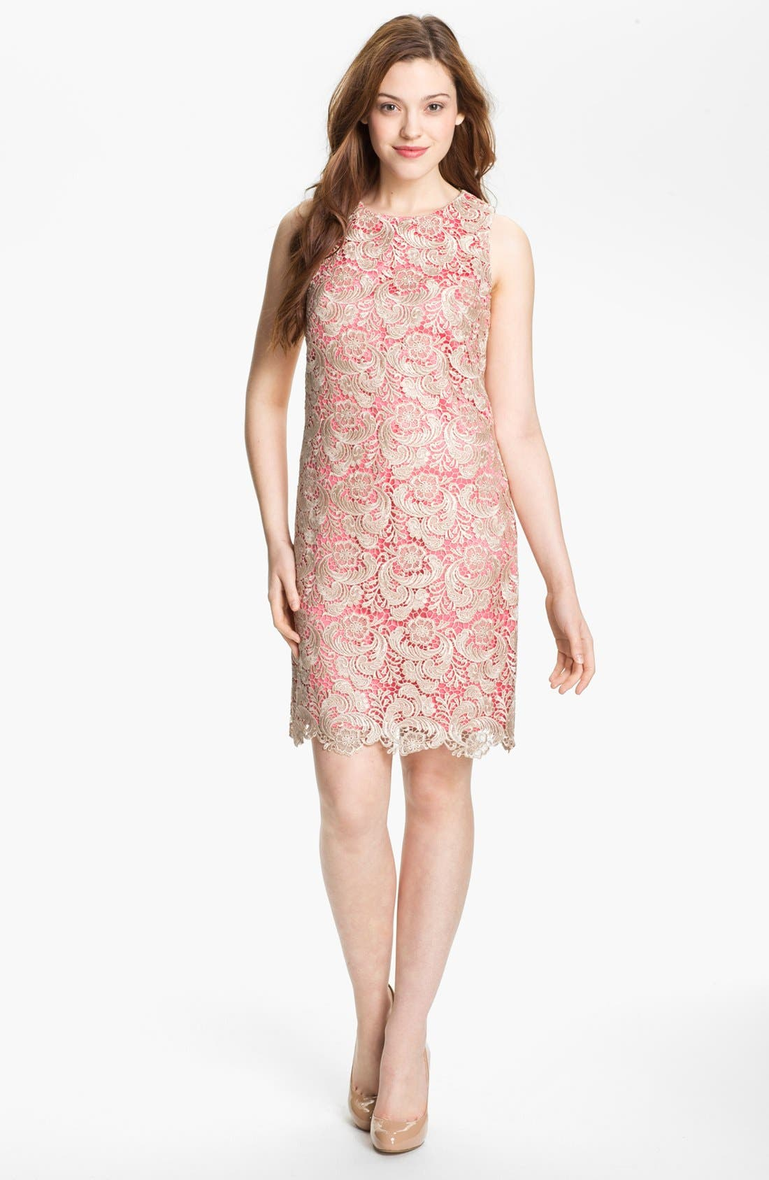 Main Image - Eliza J Sleeveless Lace Shift Dress