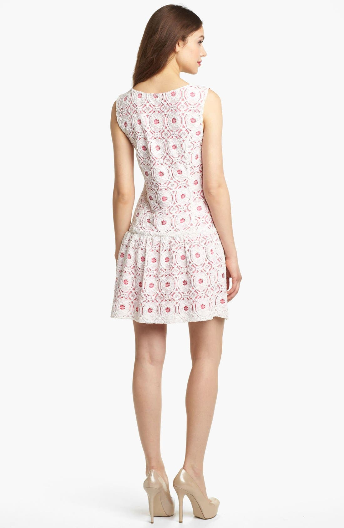 Alternate Image 2  - Kensie Lace Drop Waist Dress