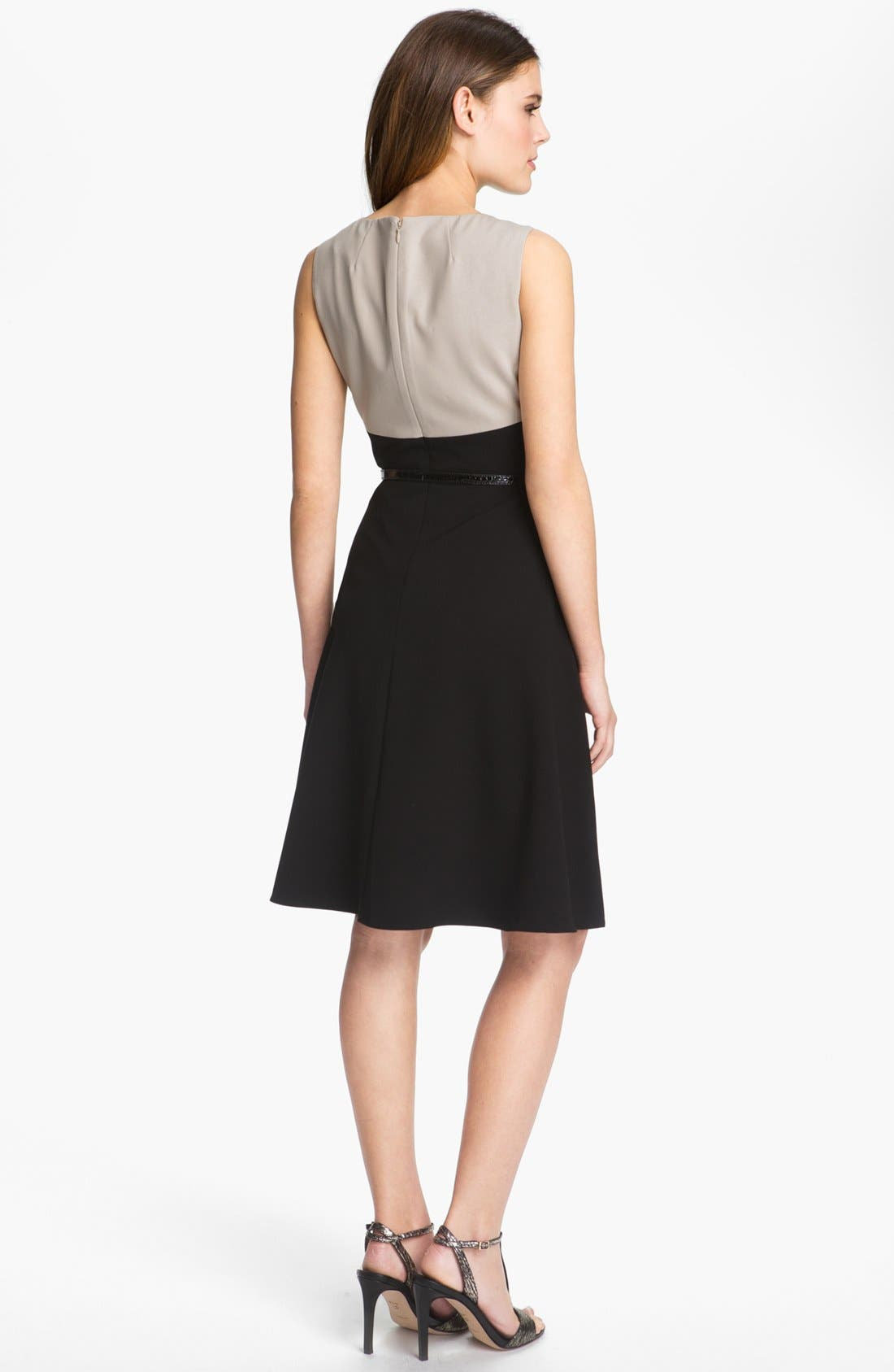 Alternate Image 2  - Calvin Klein Colorblock Fit & Flare Dress (Petite)