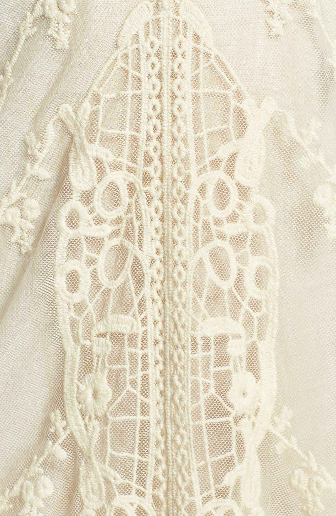 Alternate Image 4  - Black Swan Lace Shift Dress