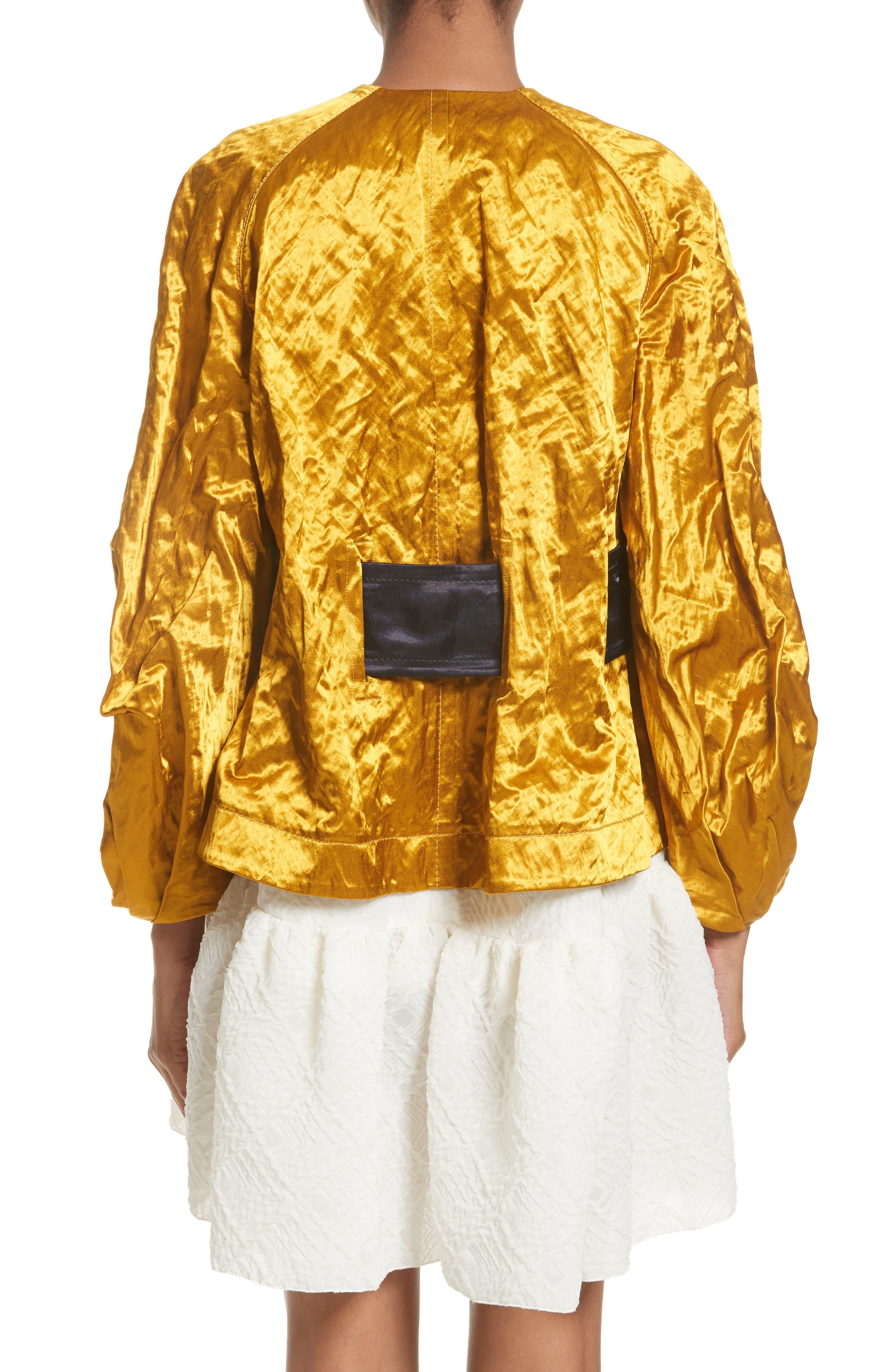 Alternate Image 2  - Roksanda Kengo Jacket