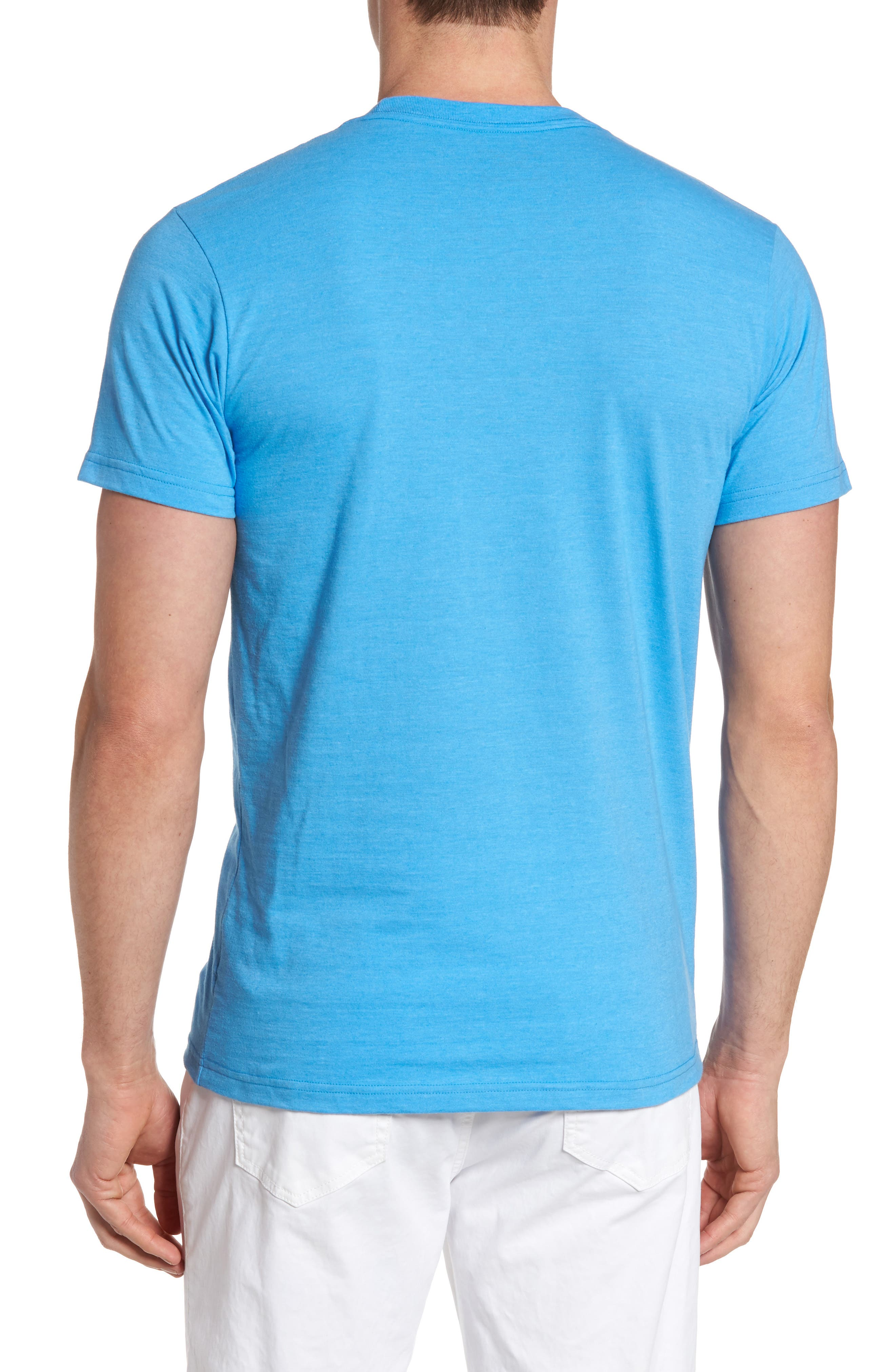 Fitz Roy Bison T-Shirt,                             Alternate thumbnail 2, color,                             Radar Blue