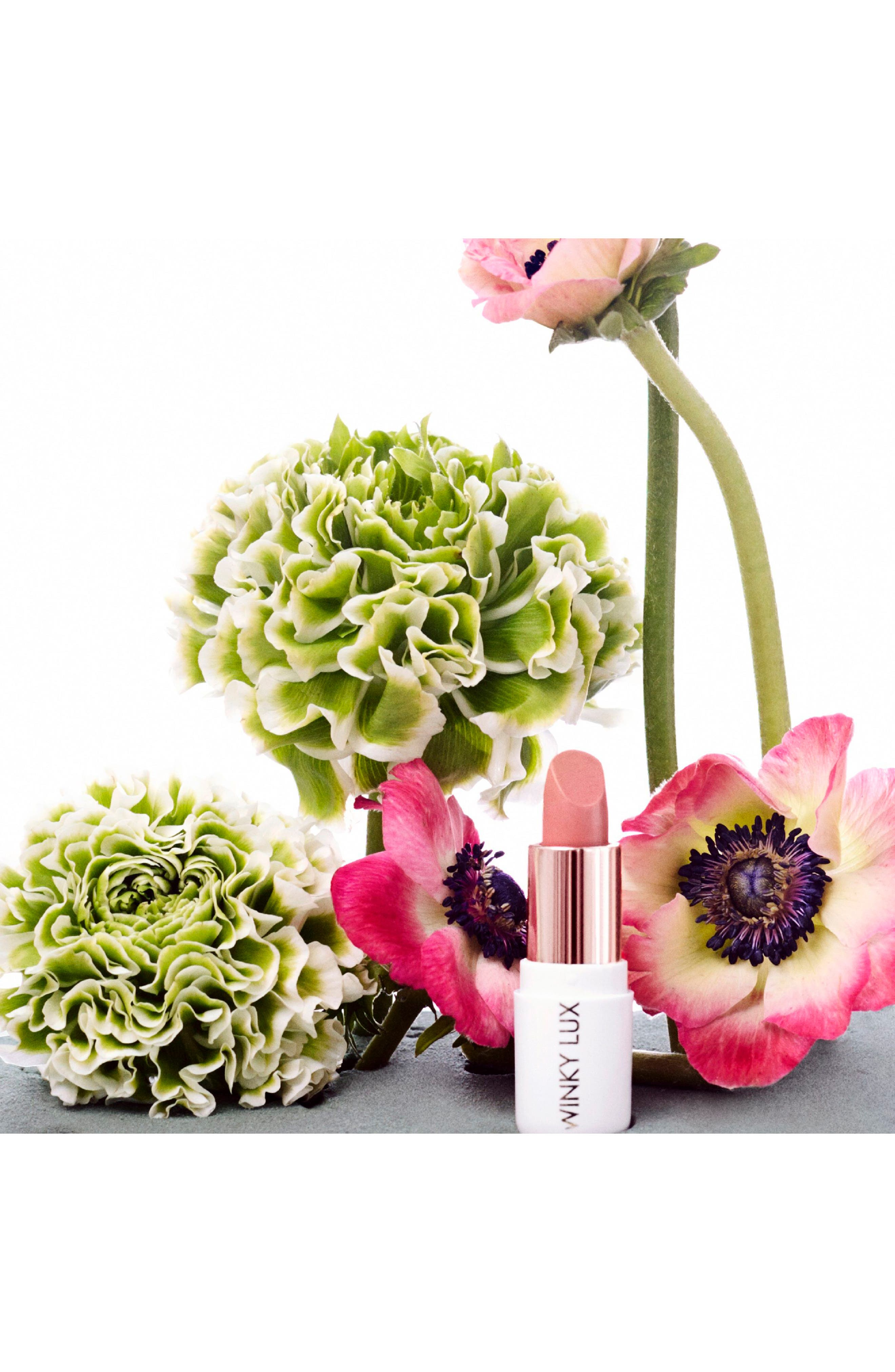 Alternate Image 5  - Winky Lux Creamy Dreamies Lip Color