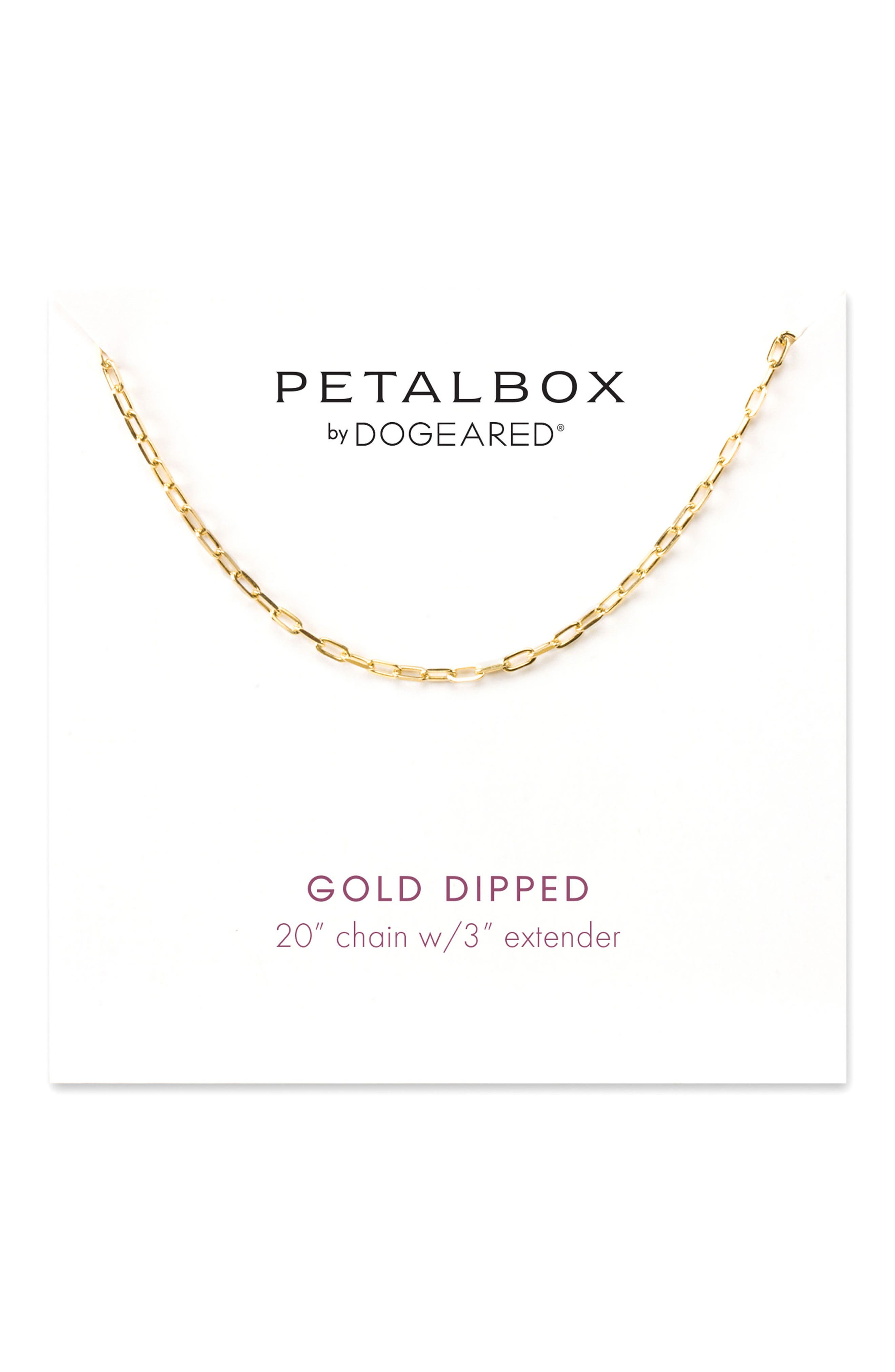 Dogeared Petalbox Link Necklace (Nordstrom Exclusive)