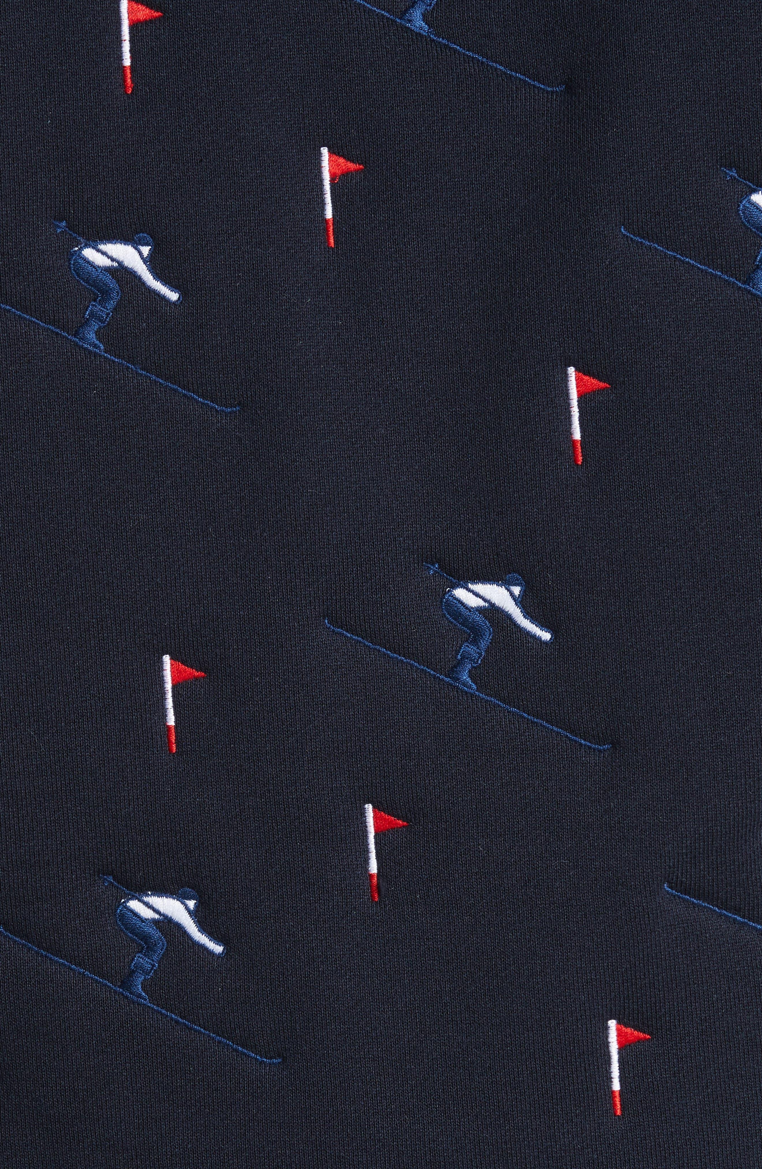 Embroidered Skier Zip Hoodie,                             Alternate thumbnail 5, color,                             Navy