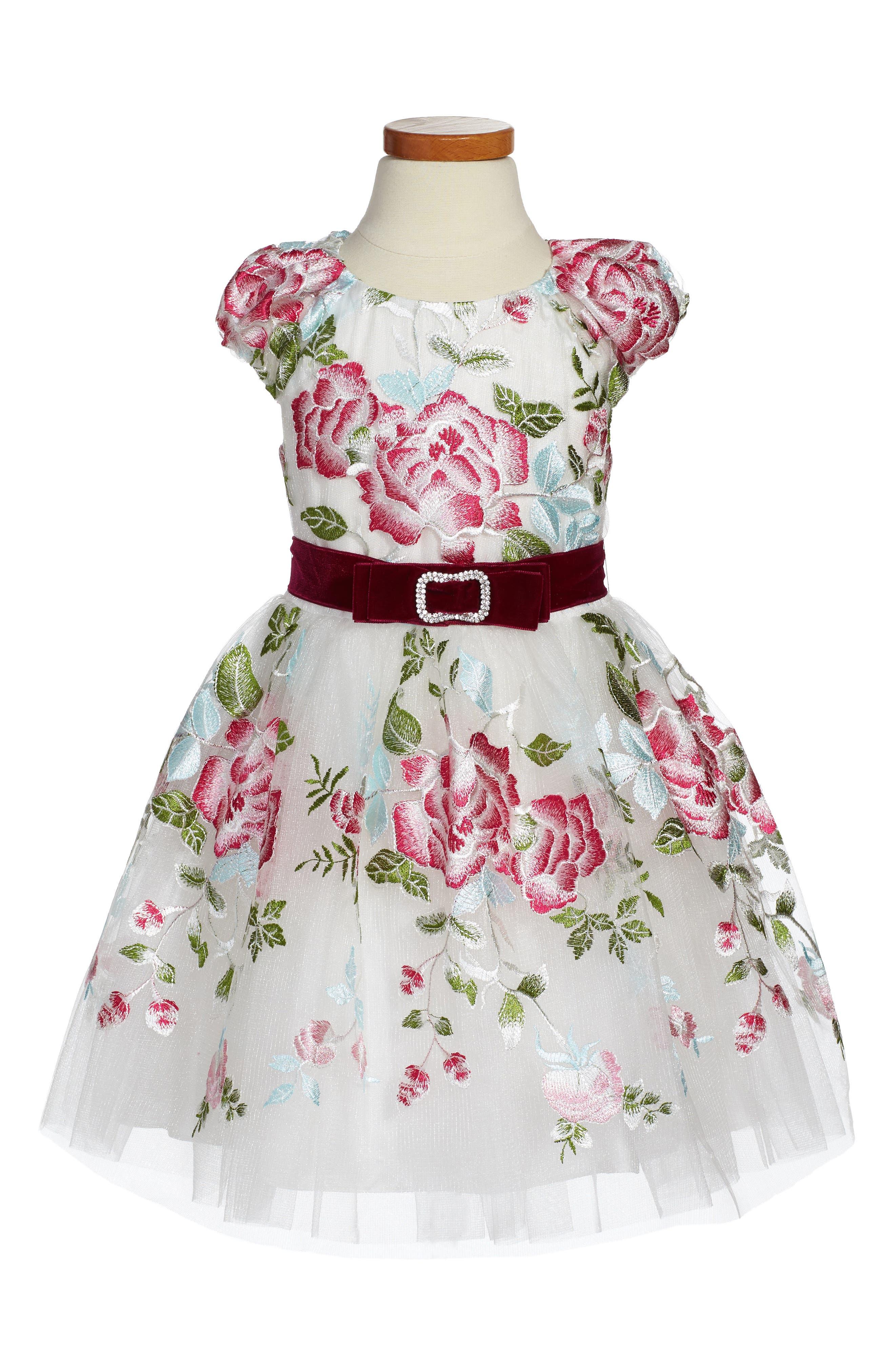 David Charles Rose Embroidered Tulle Dress (Toddler Girls & Little Girls)
