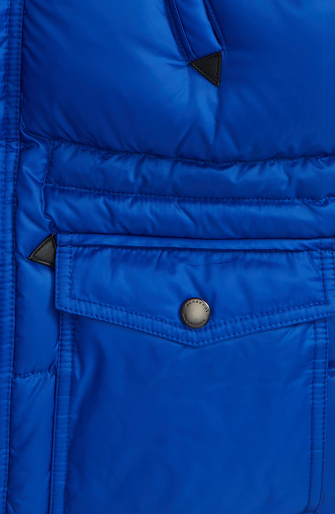 Petter Hooded Down Puffer Jacket,                             Alternate thumbnail 2, color,                             Brilliant Blue