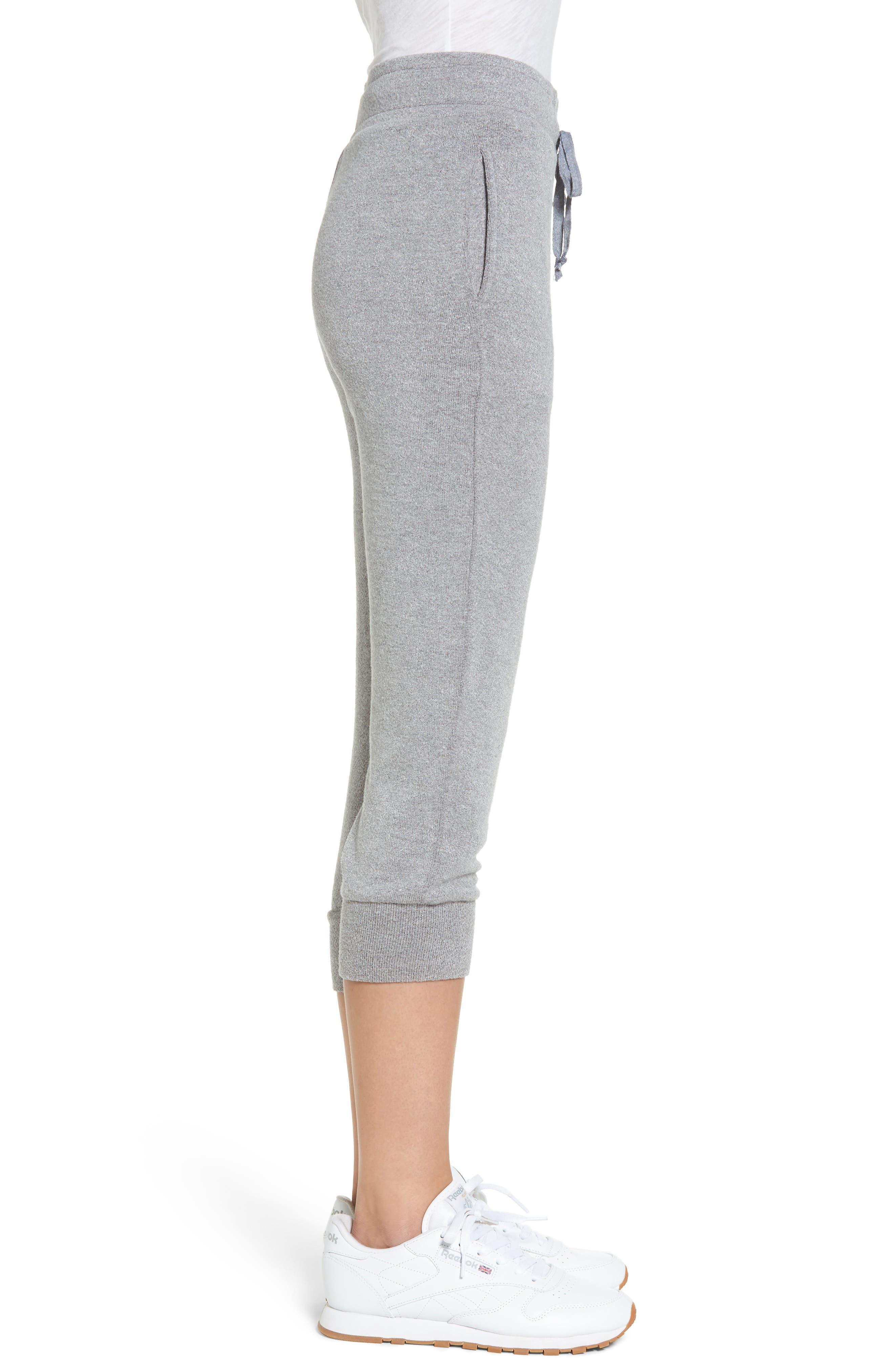 Alternate Image 3  - Lira Clothing Flint Fleece Crop Jogger Pants
