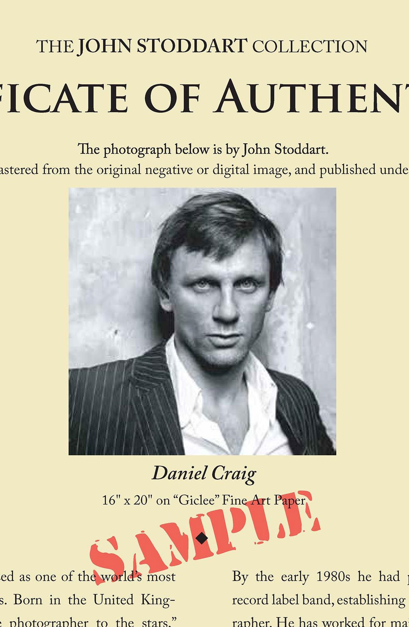 Alternate Image 4  - Artography Limited Daniel Craig Fine Art Print