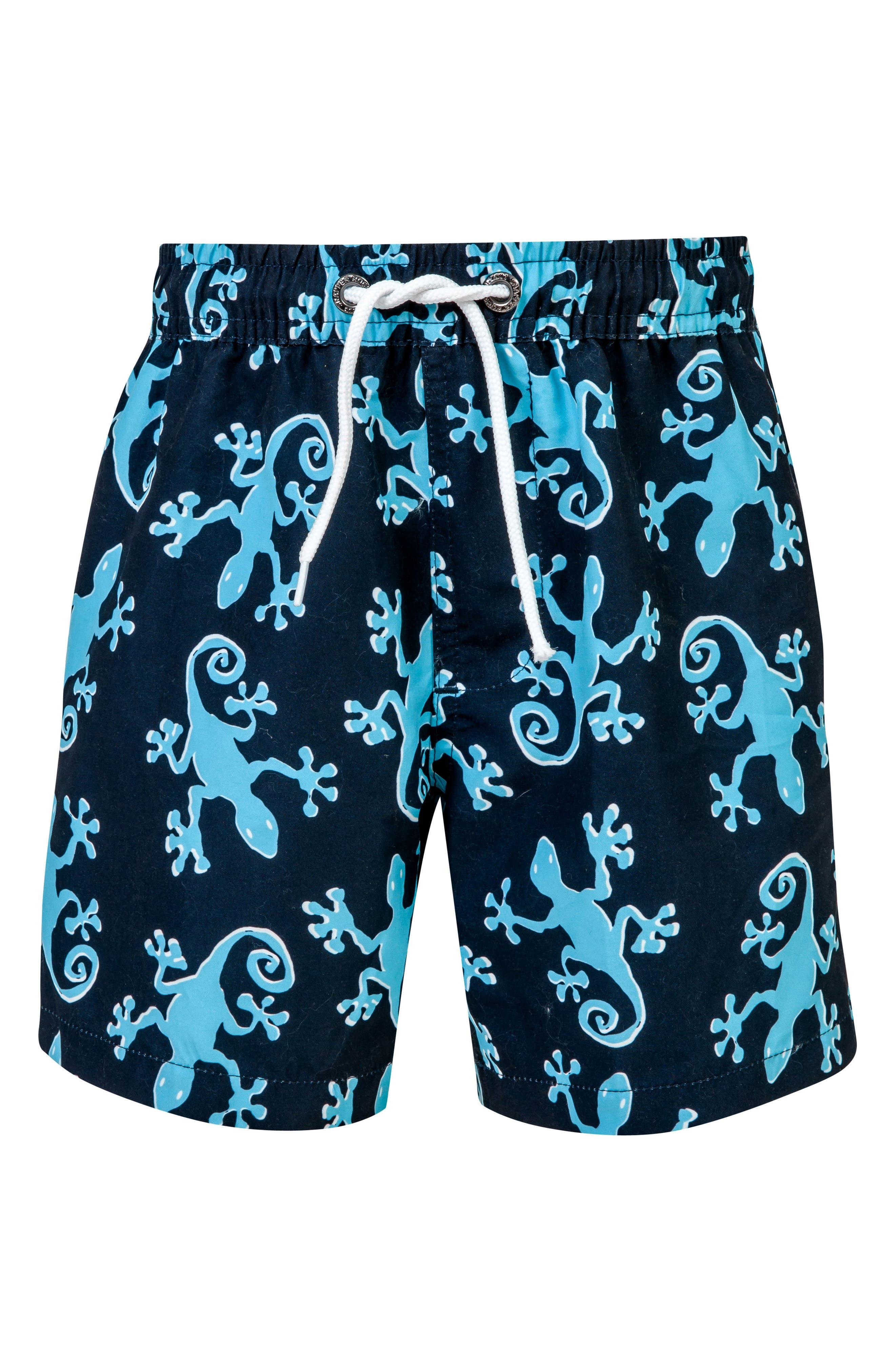 Gecko Board Shorts,                         Main,                         color, Navy/ Aqua