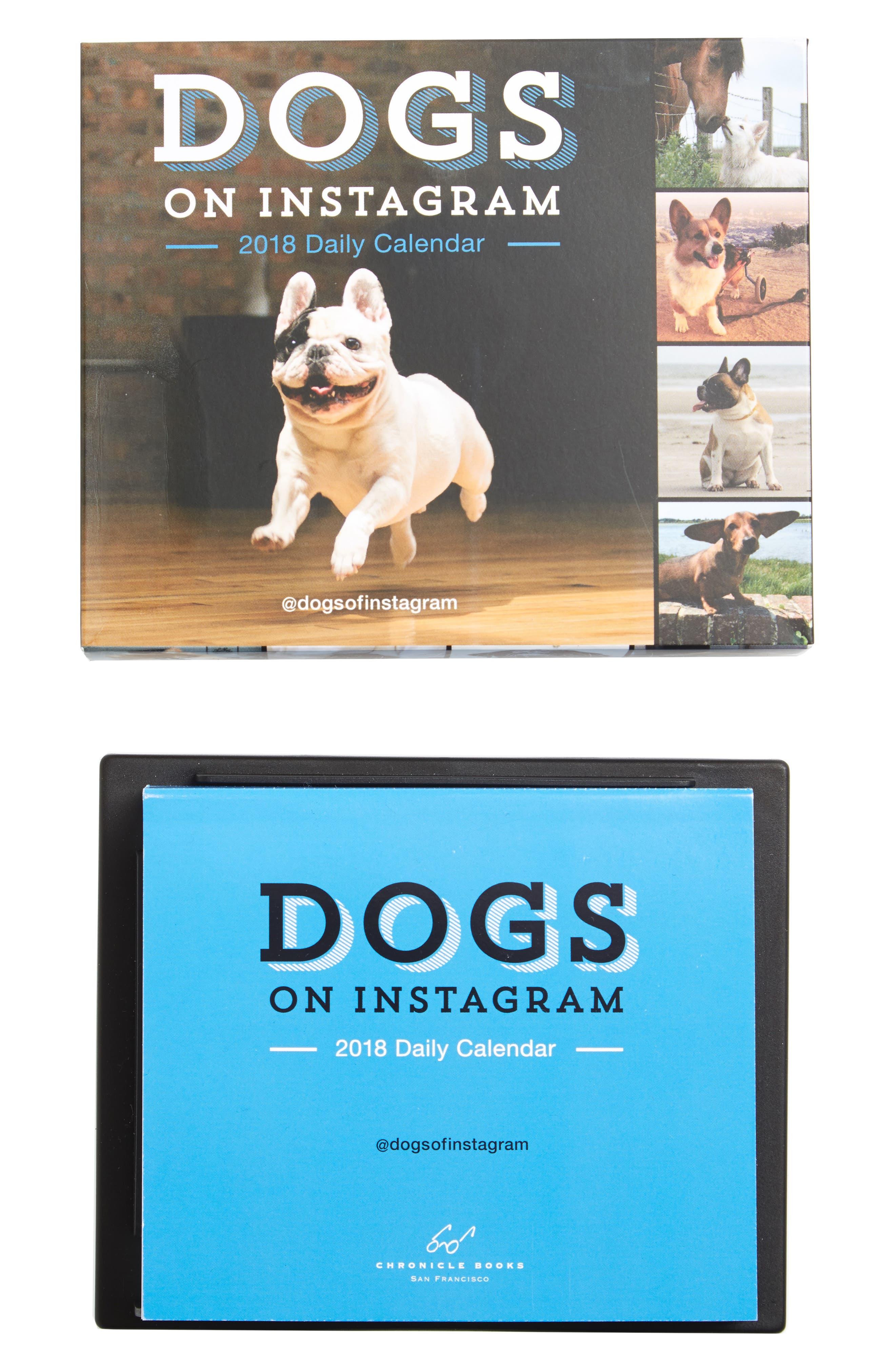 Dogs on Instagram 2018 Calendar,                         Main,                         color, Brown