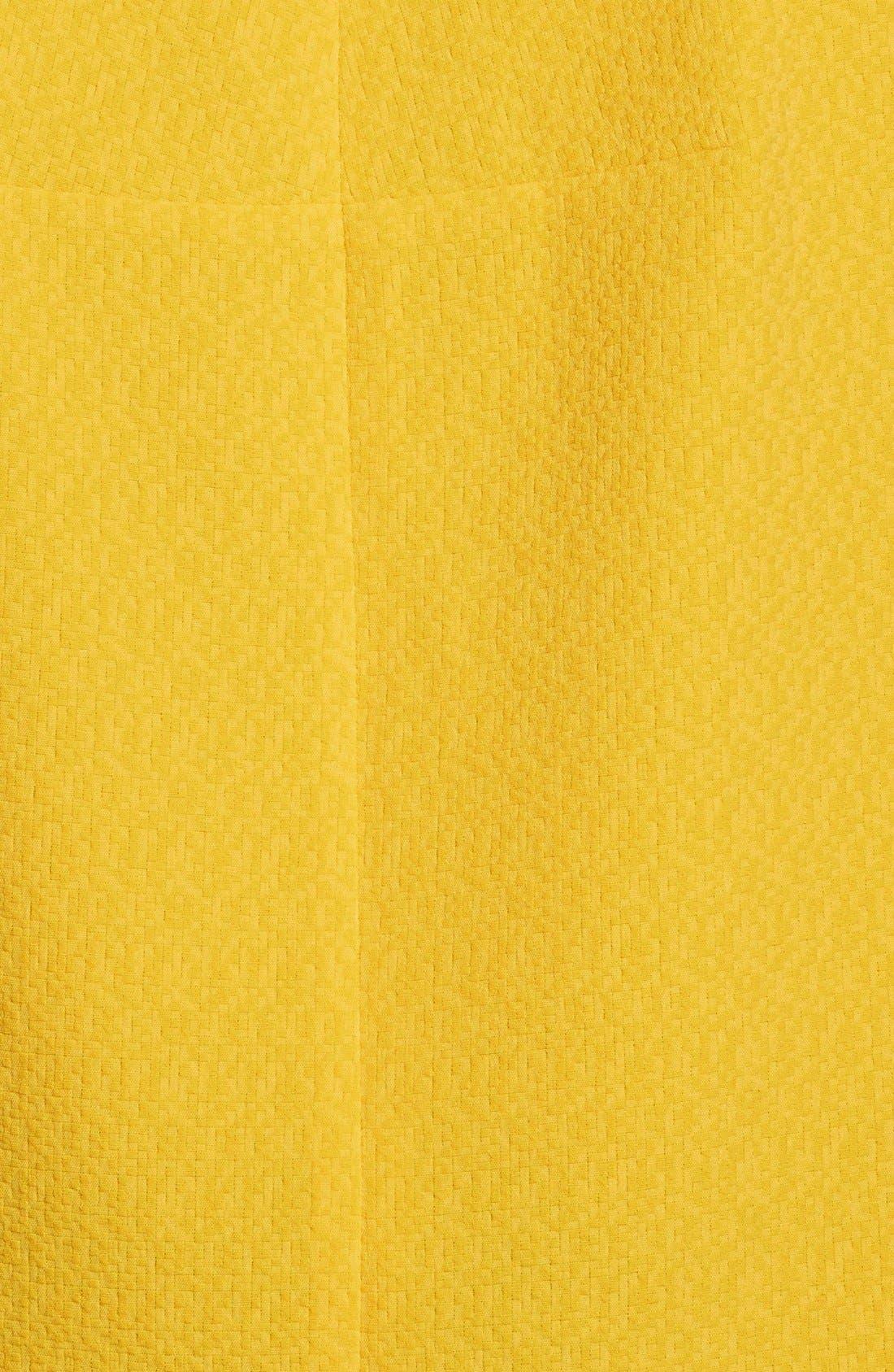 Alternate Image 3  - kensie Texture Crop Top