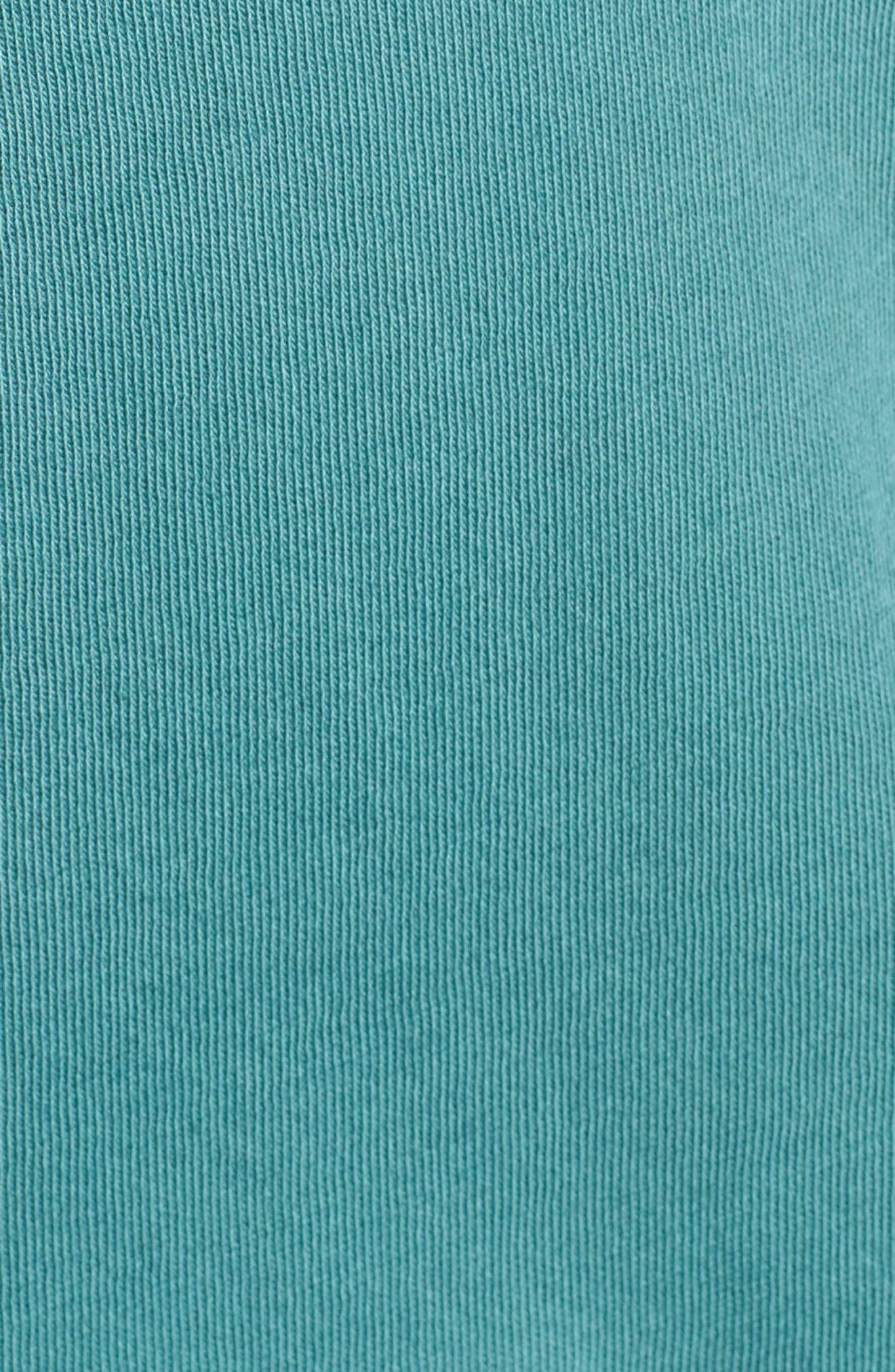 The V-Neck Tee,                             Alternate thumbnail 5, color,                             Silver Pine