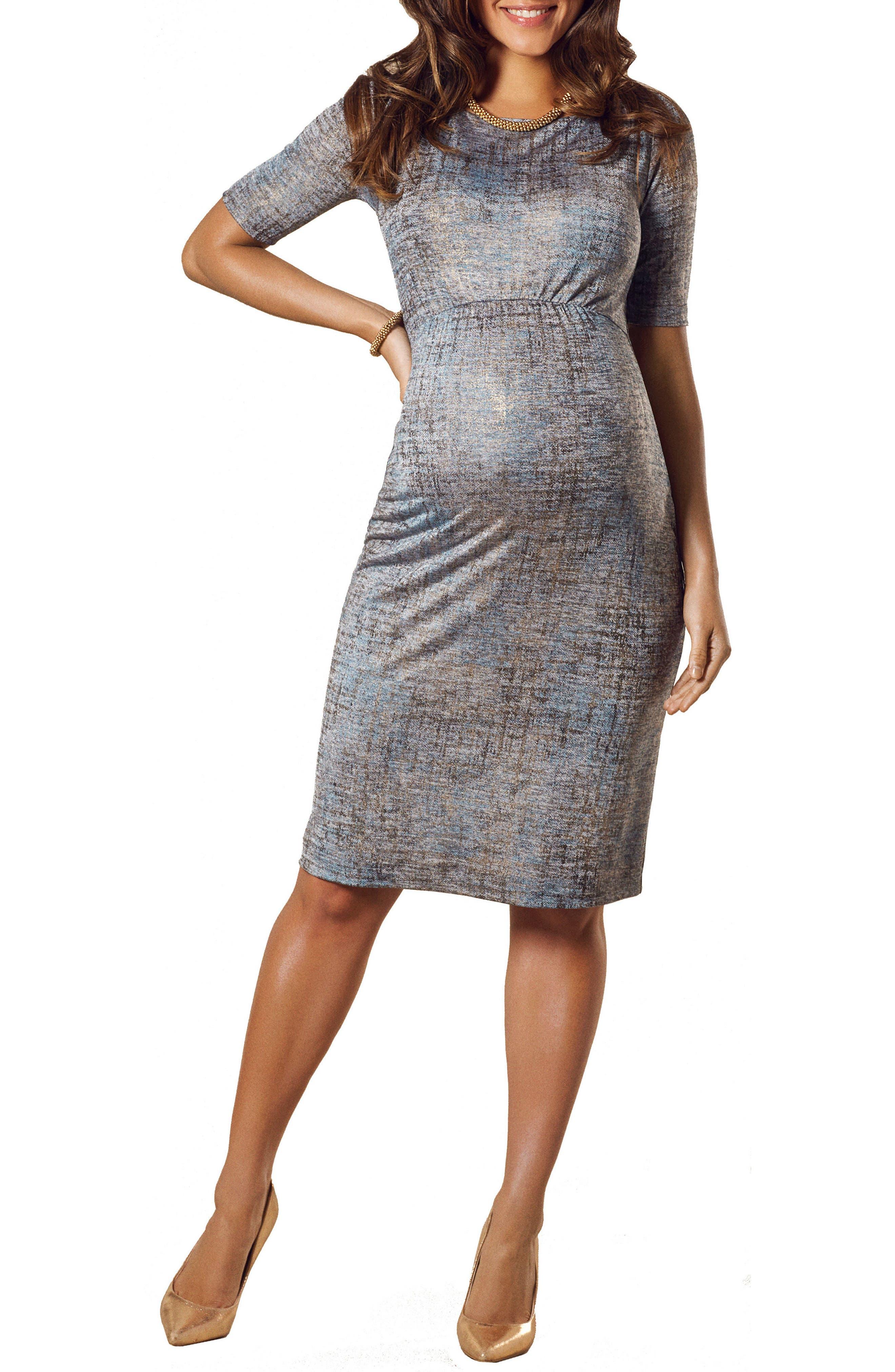 Alternate Image 1 Selected - Tiffany Rose Anna Maternity Shift Dress
