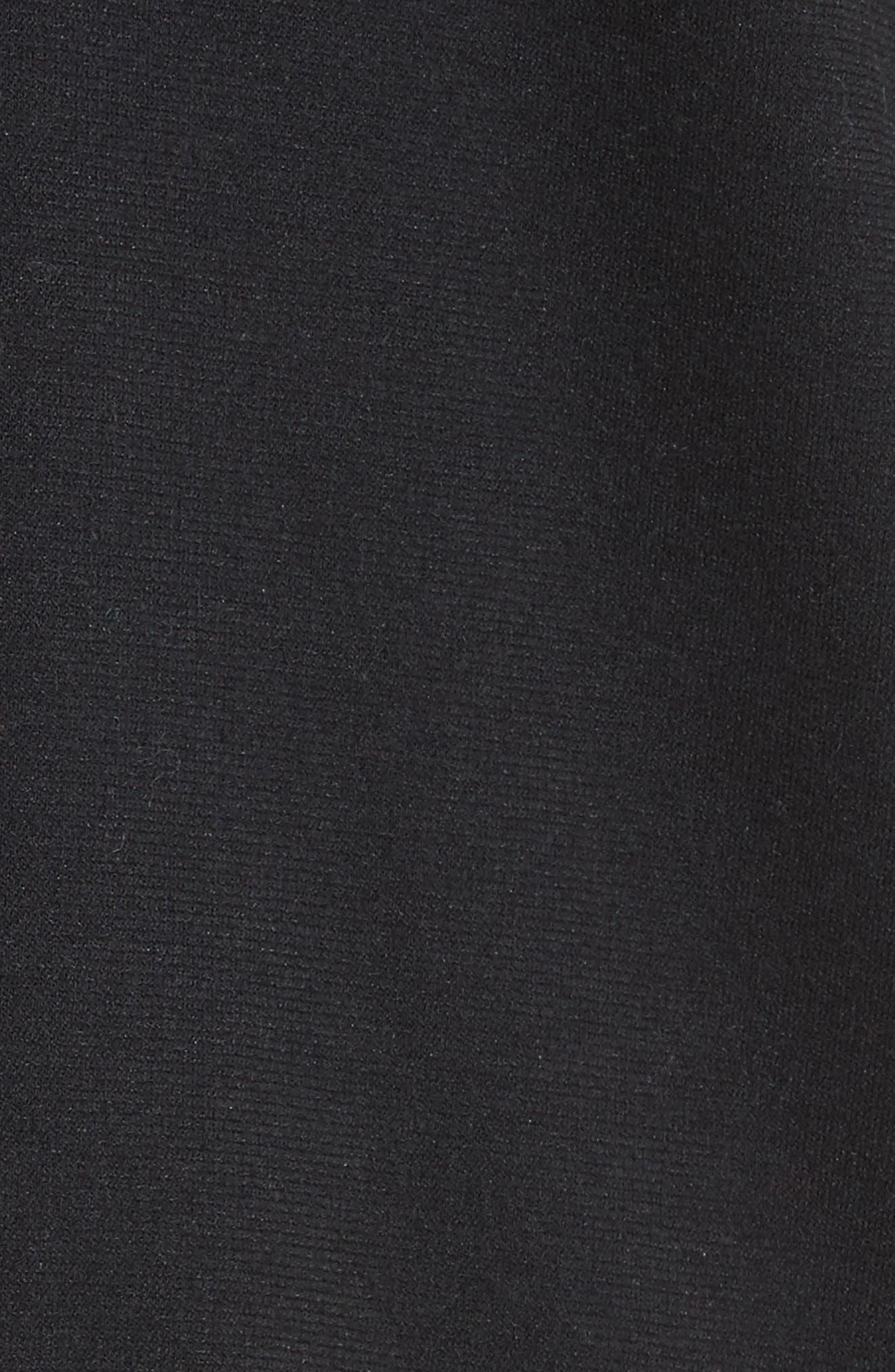 Alternate Image 6  - Joie Deetra Rib Knit Trim Jacket