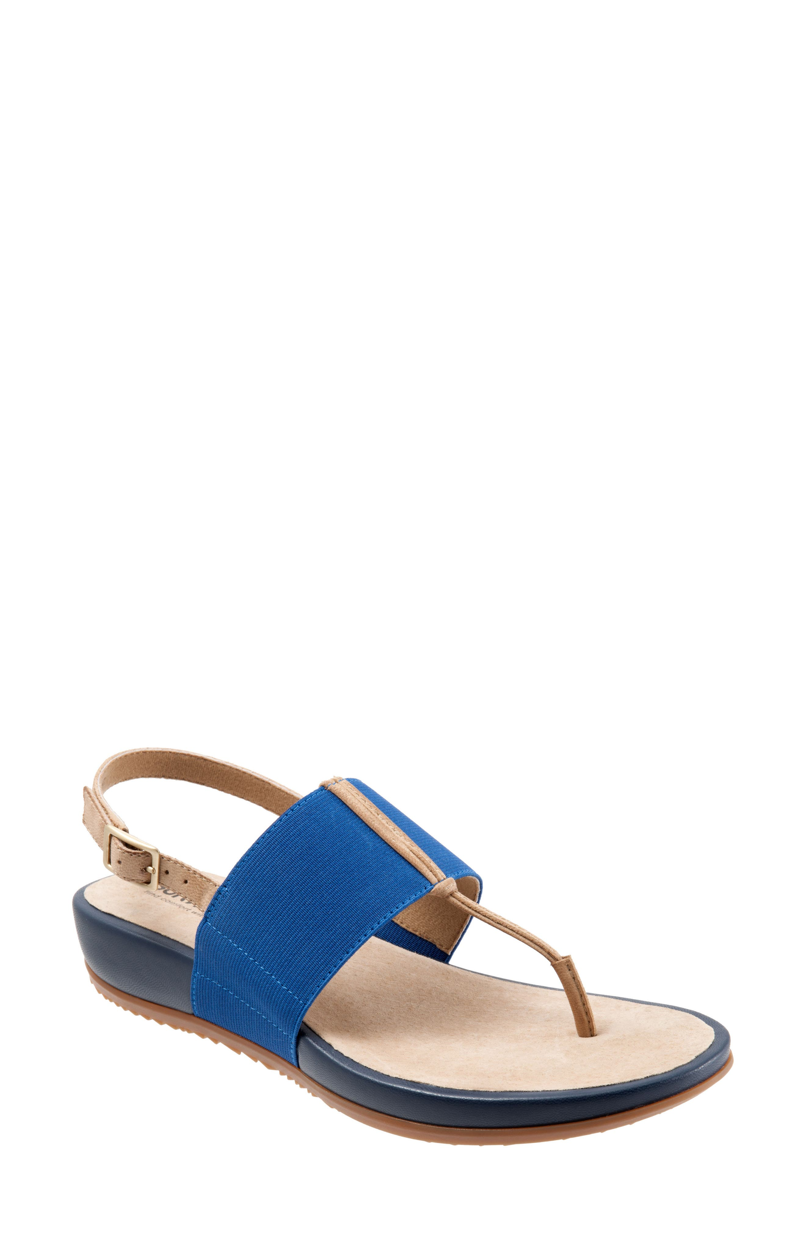 Daytona Sandal,                             Main thumbnail 1, color,                             Navy/ Tan Leather