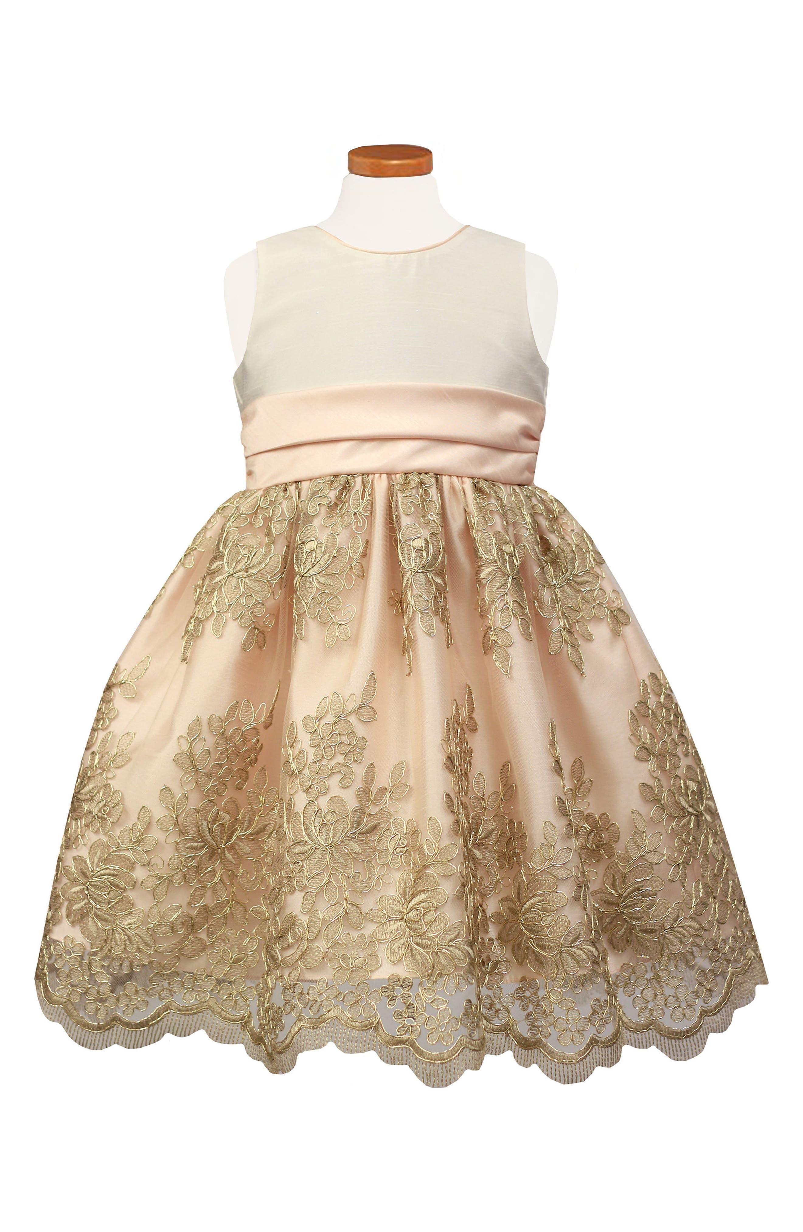Main Image - Sorbet Floral Embroidered Party Dress (Toddler Girls, Little Girls & Big Girls)