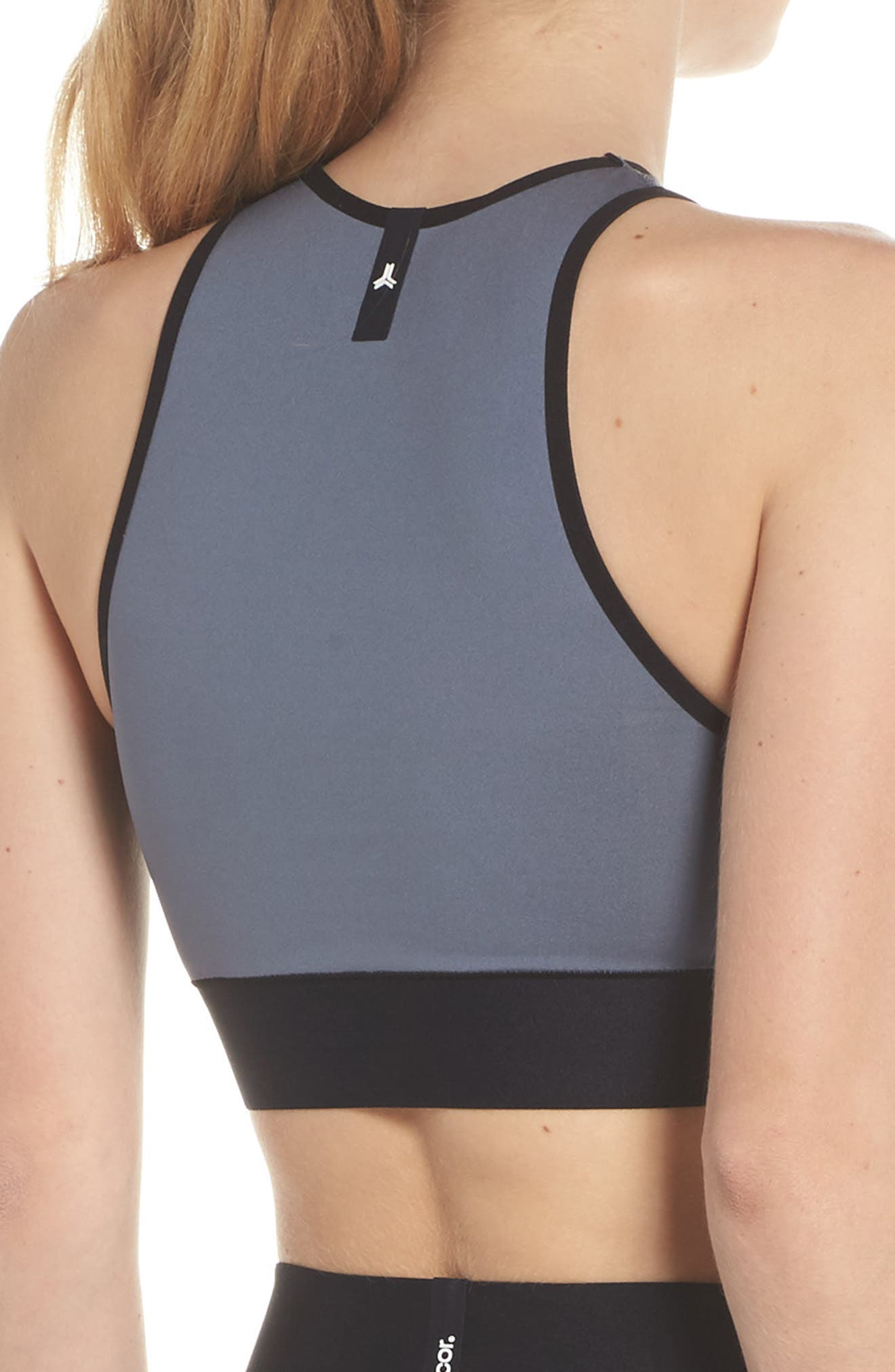 Altitude Lux Make Out Crop Top,                             Alternate thumbnail 2, color,                             Silver Brushed Steel
