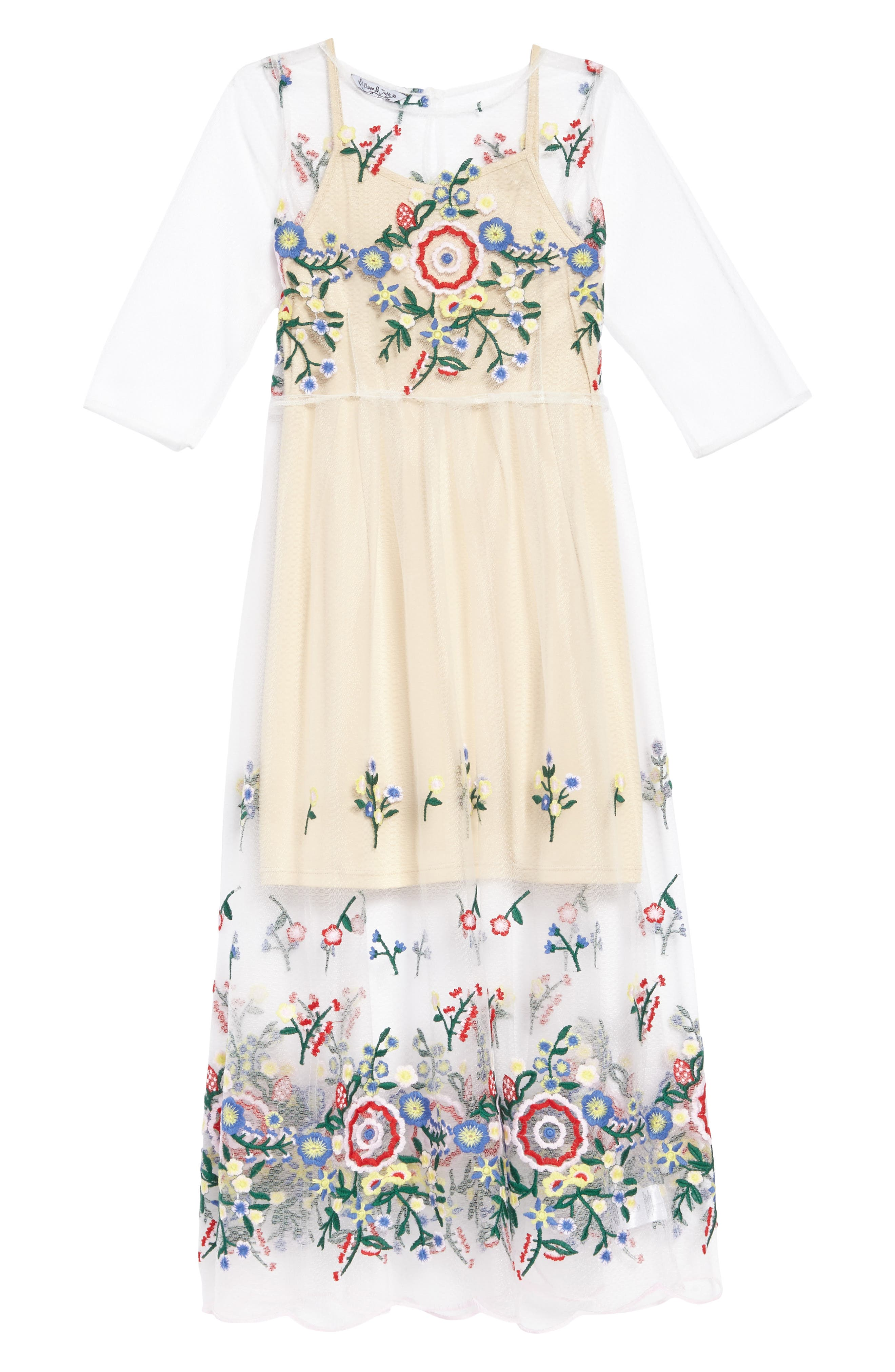 Embroidered Mesh Dress,                         Main,                         color, Multi