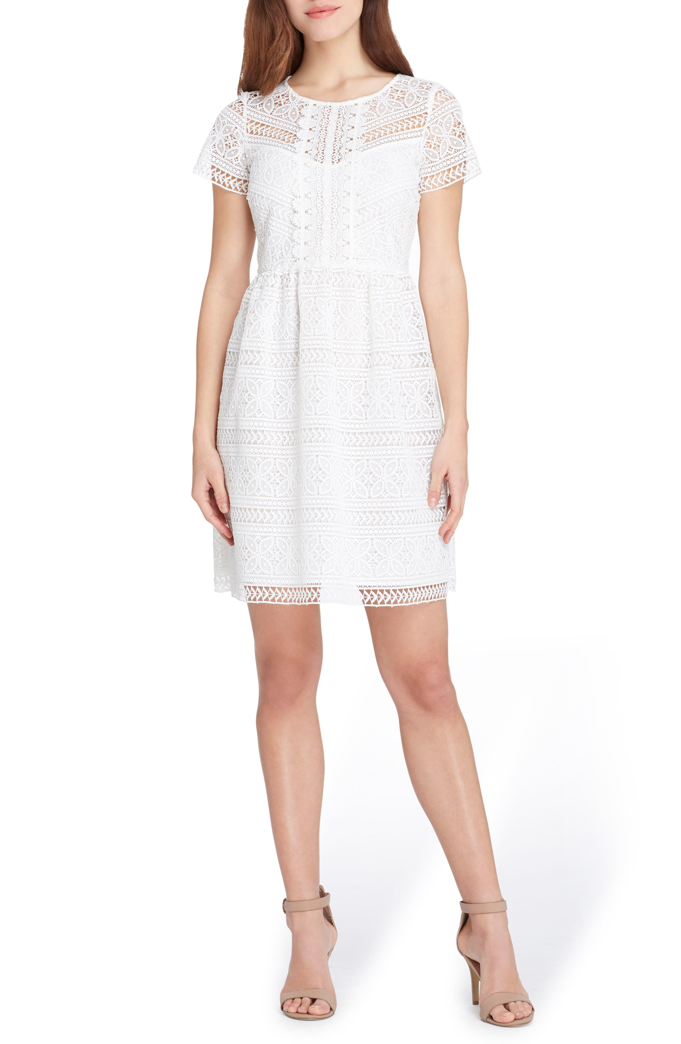 Tahari Lace Fit & Flare Dress (Regular & Petite)