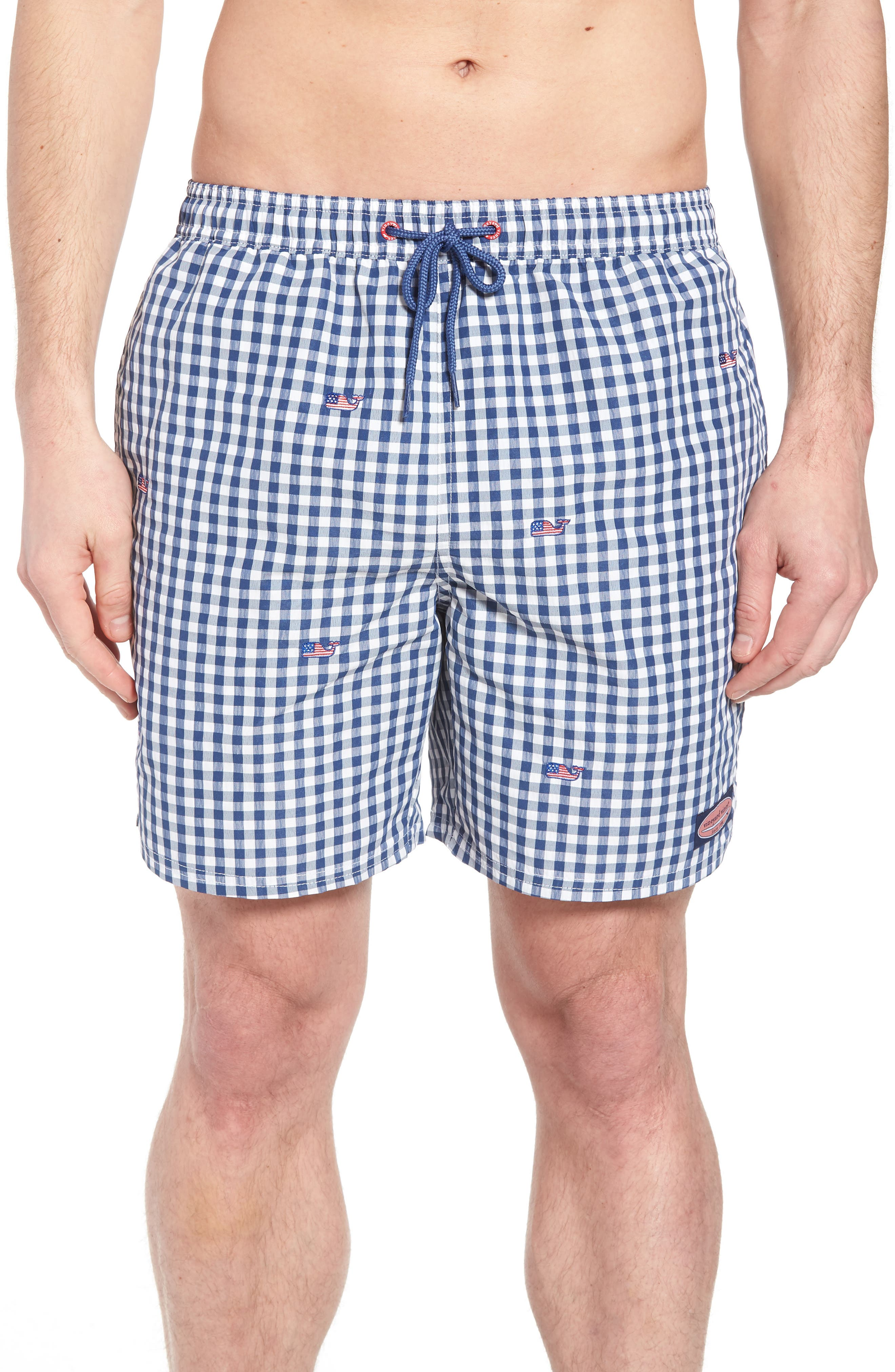 Chappy Flag Whale Embroidered Gingham Swim Trunks,                         Main,                         color, Moonshine