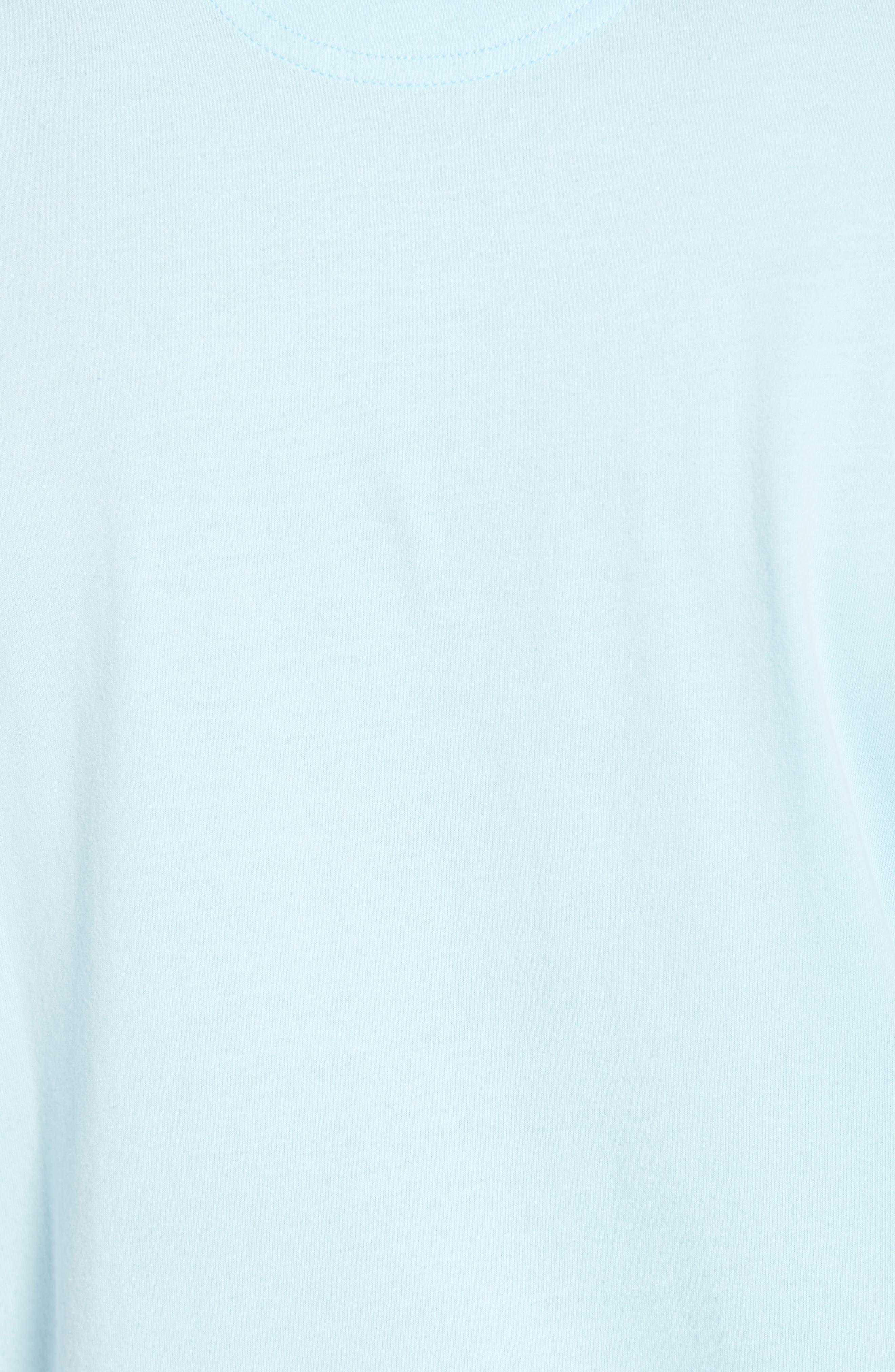 Brushed Pima Cotton T-Shirt,                             Alternate thumbnail 5, color,                             Blue Orydalis