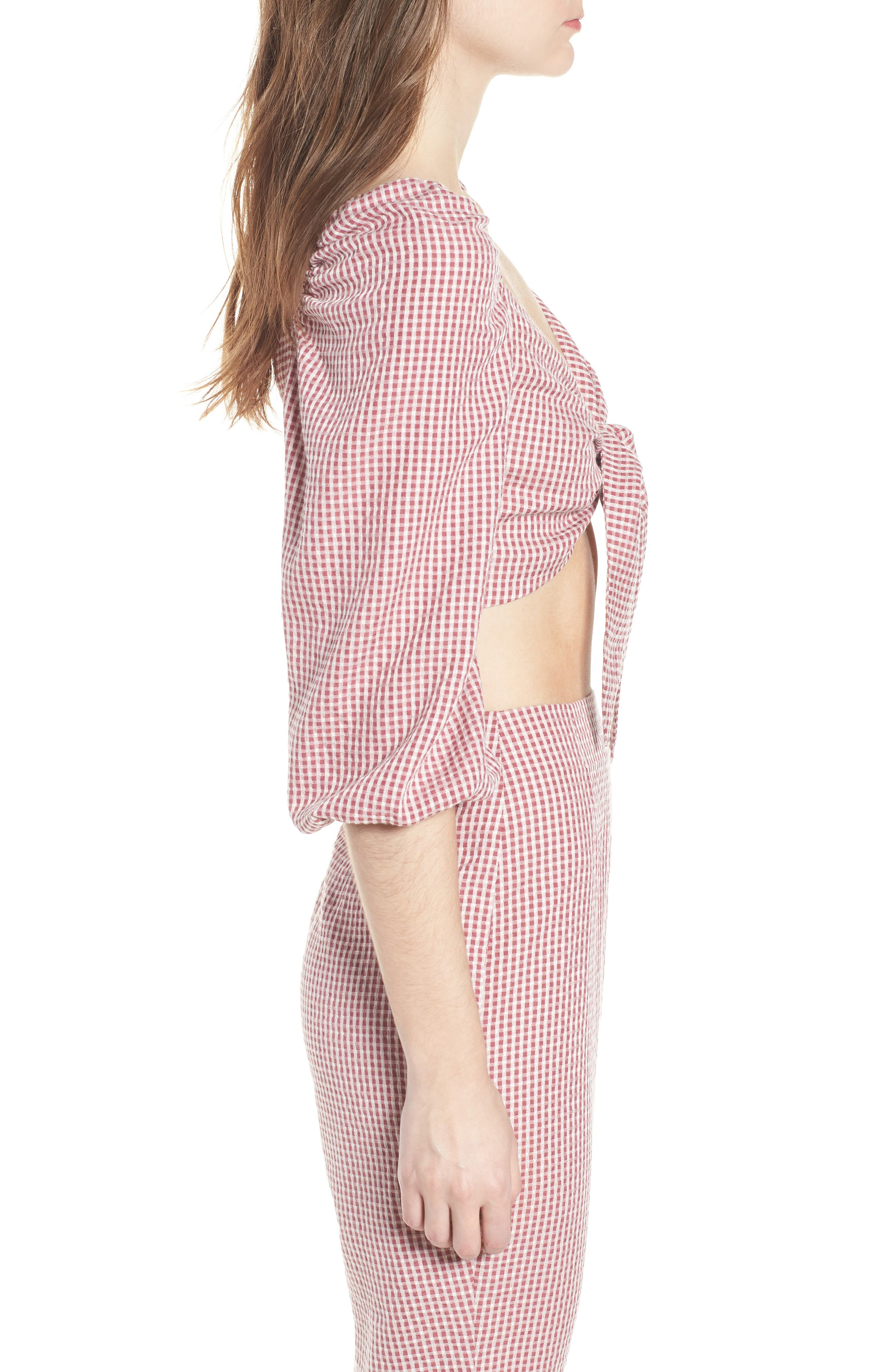 Digby Tie Front Crop Top,                             Alternate thumbnail 4, color,                             Red Gingham