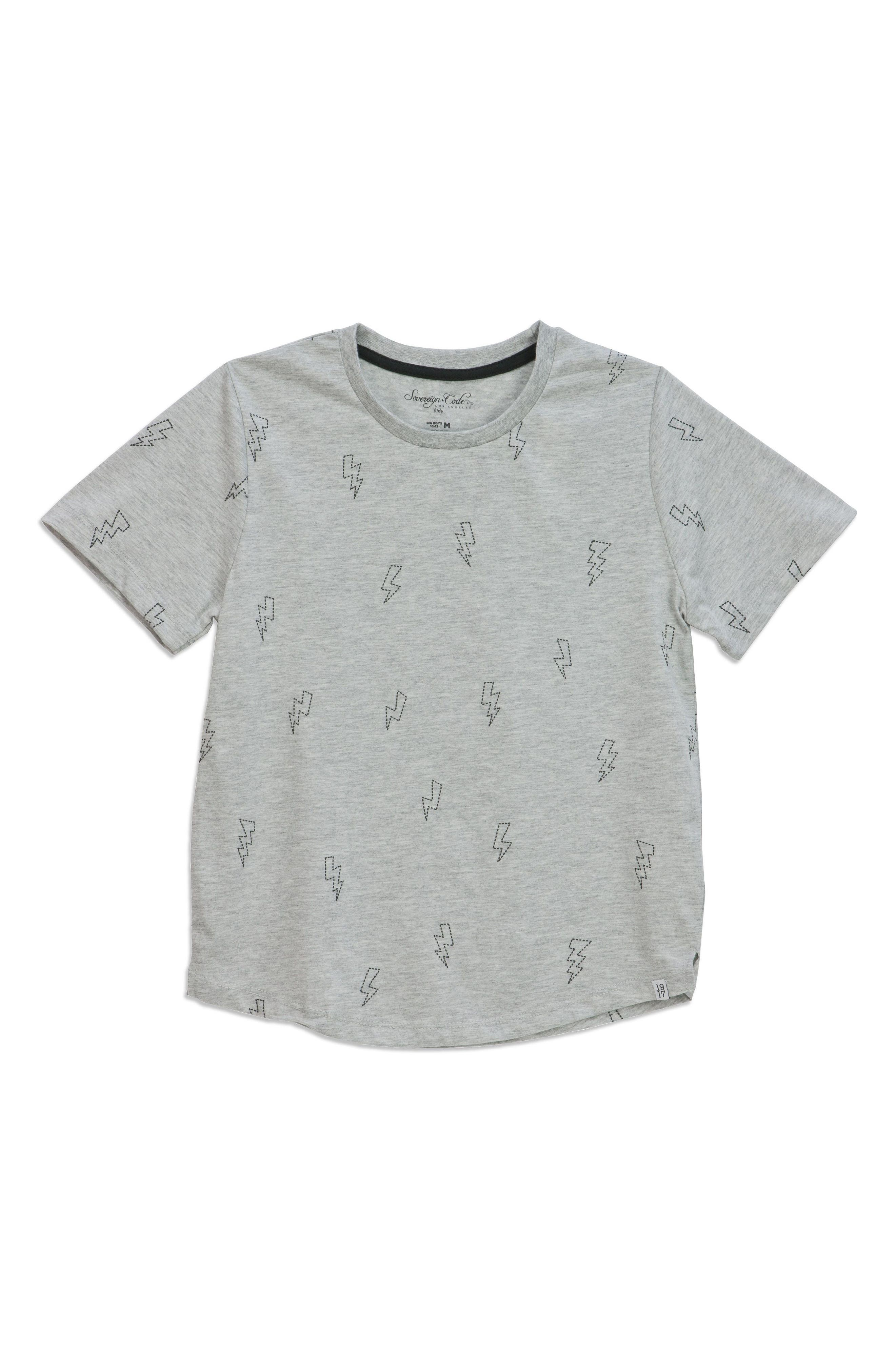 Feel Embroidered T-Shirt,                             Main thumbnail 1, color,                             Grey Boltz