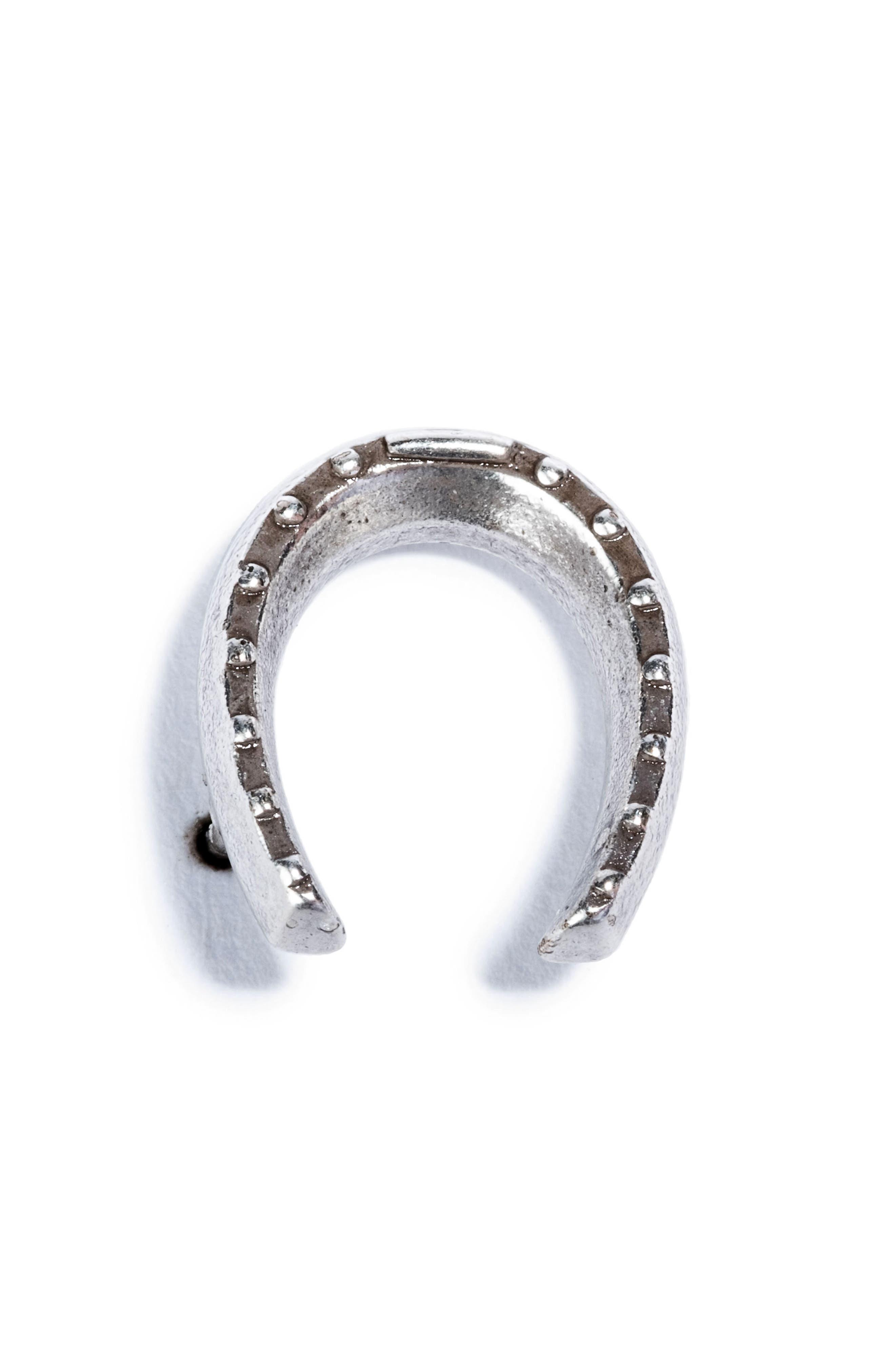 Horseshoe Pin,                         Main,                         color, Silver