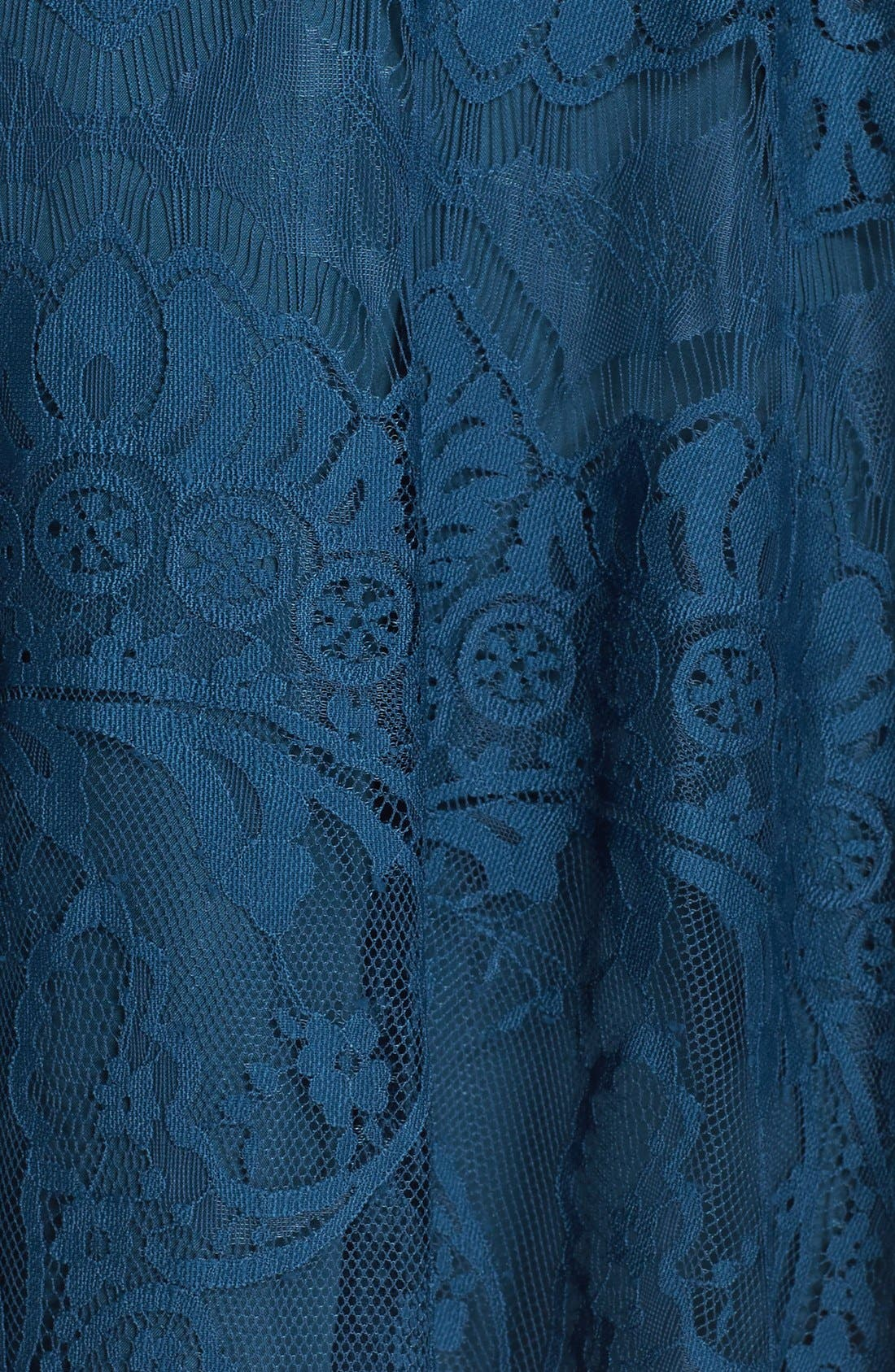 Alternate Image 5  - BB Dakota 'Rhianna' Lace Fit & Flare Dress (Plus Size)