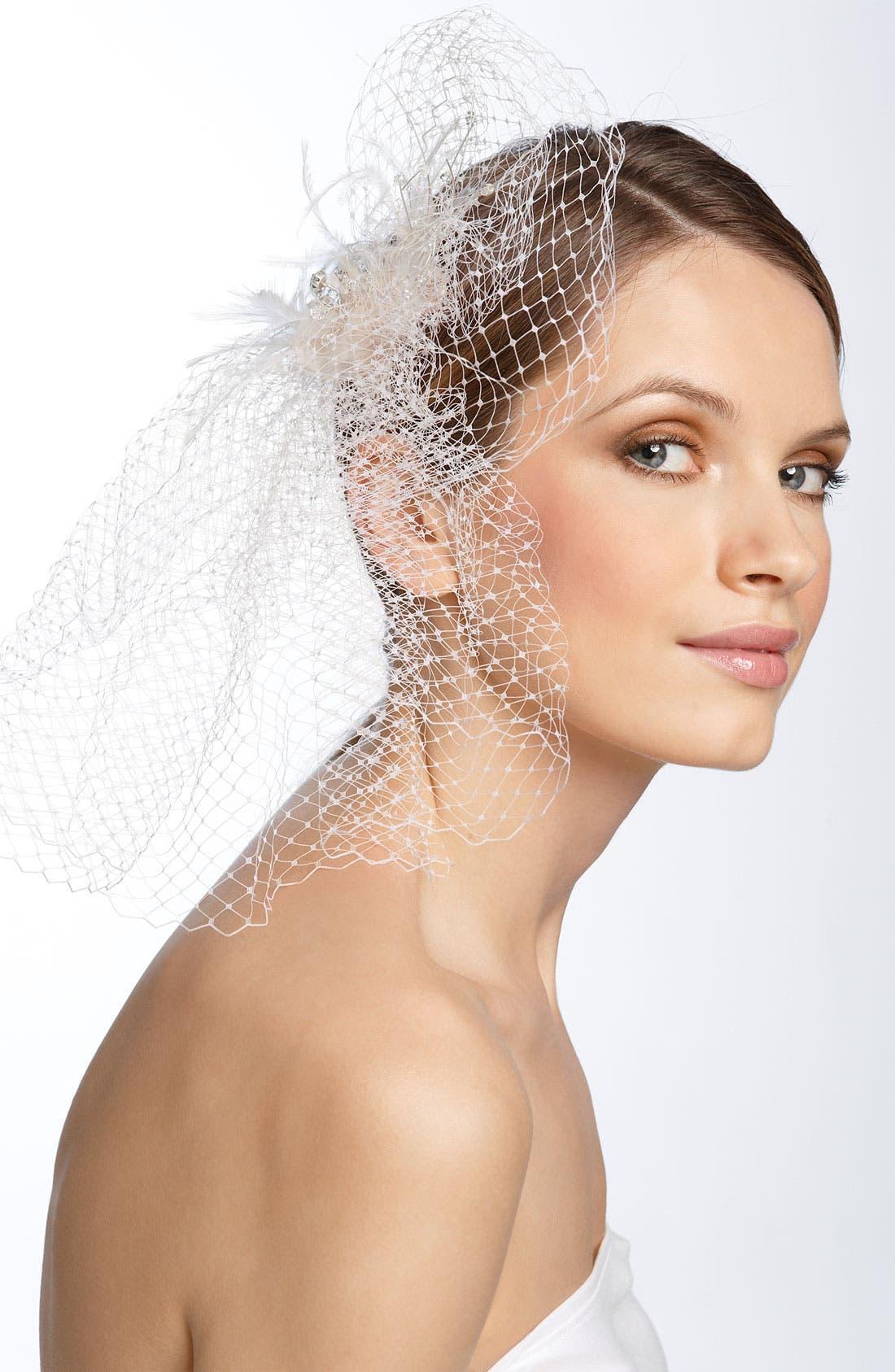 Main Image - Tasha Birdcage Veil Hair Clip