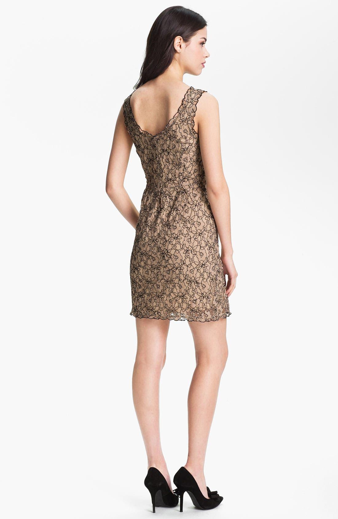 Alternate Image 2  - Joie 'Rori' Lace Dress