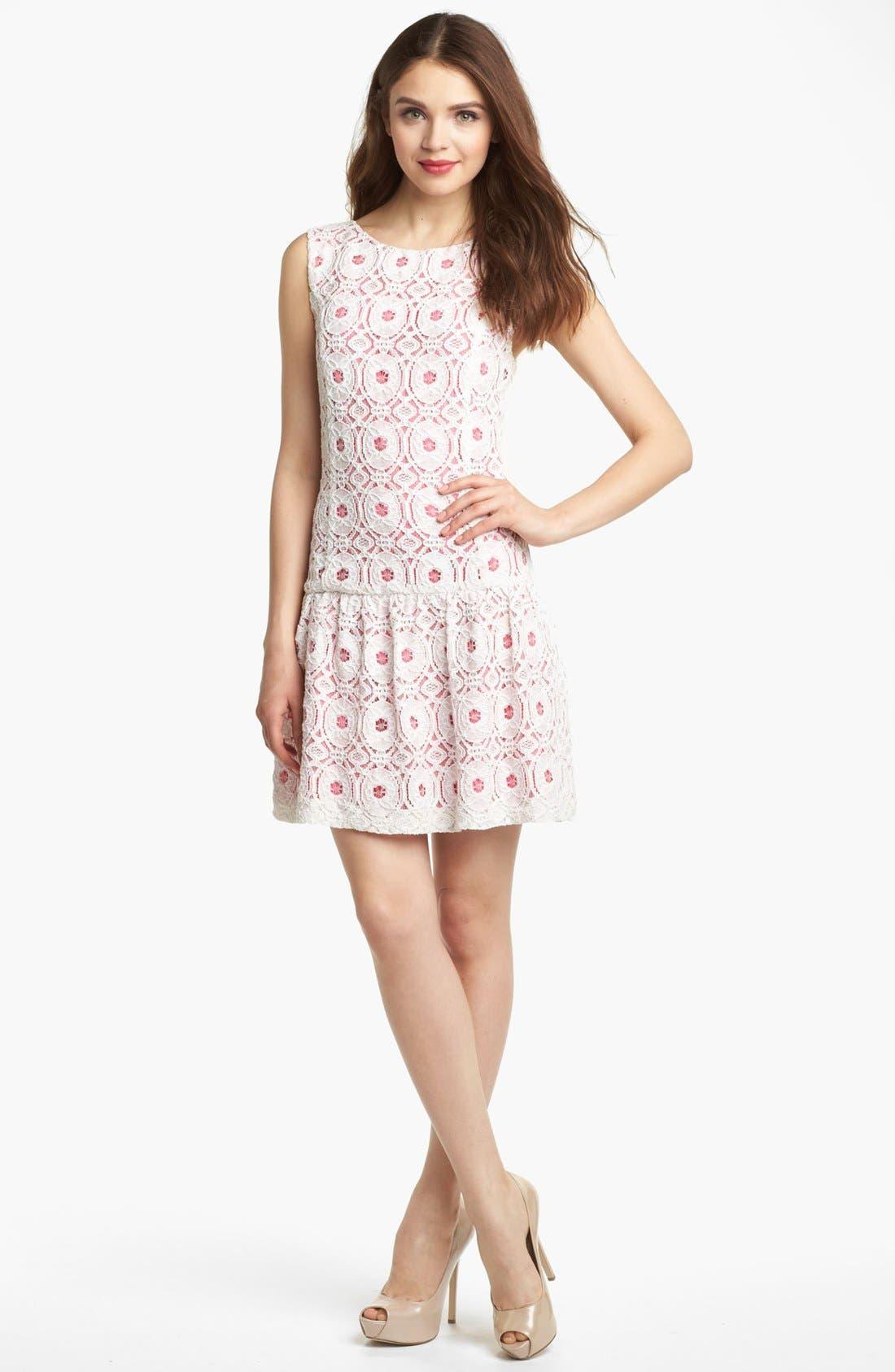Main Image - Kensie Lace Drop Waist Dress
