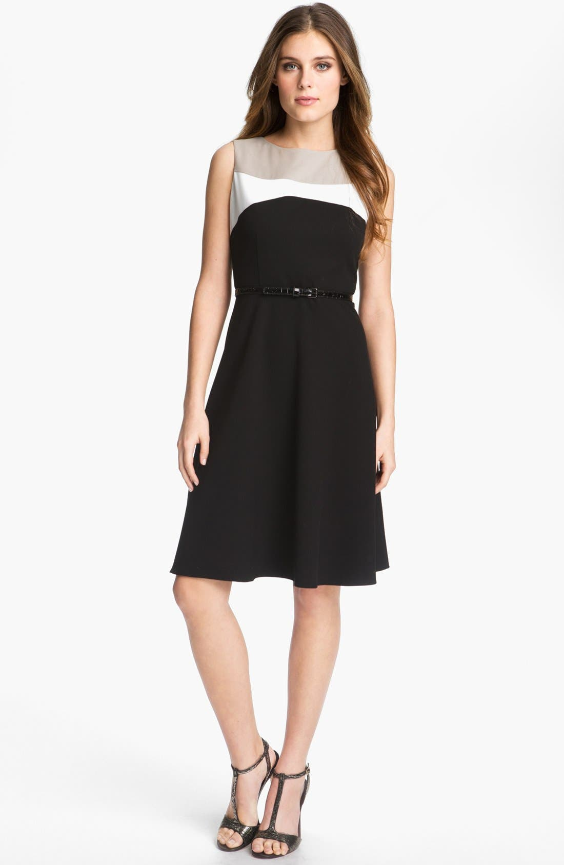 Alternate Image 1 Selected - Calvin Klein Colorblock Fit & Flare Dress (Petite)
