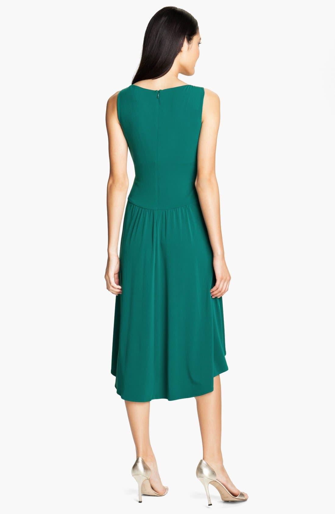 Alternate Image 2  - Ivy & Blu Pleated Front V-Neck Dress