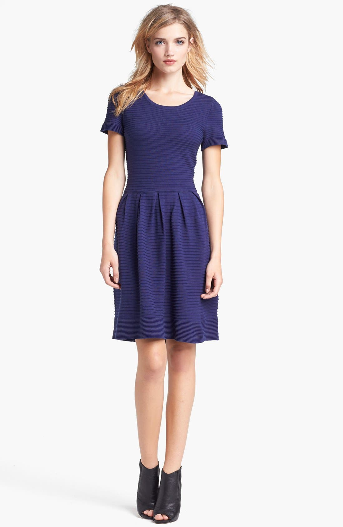 Alternate Image 1 Selected - Taylor Dresses Fit & Flare Sweater Dress (Regular & Petite)