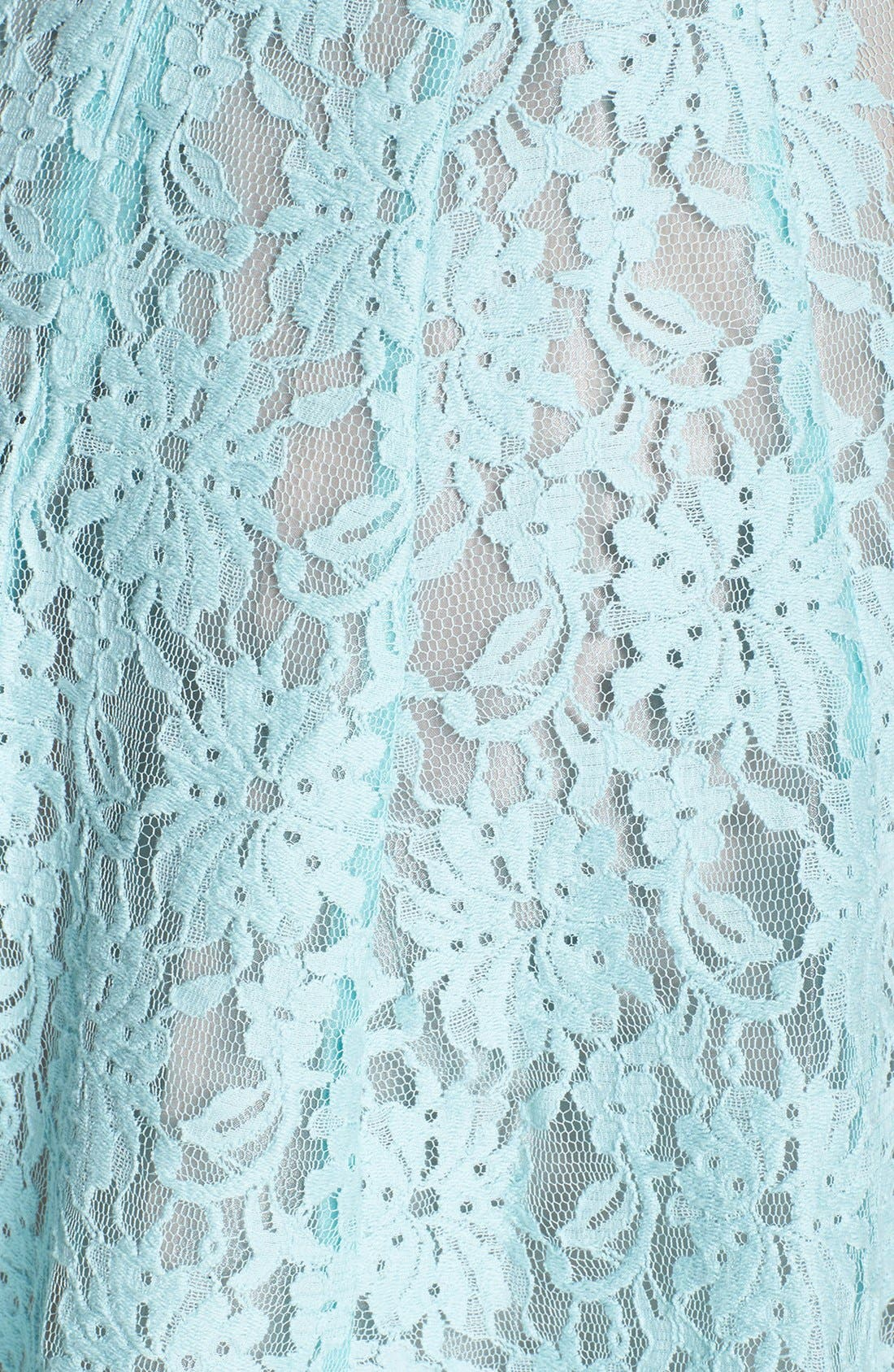 Alternate Image 4  - Taylor Dresses Lace Fit & Flare Dress