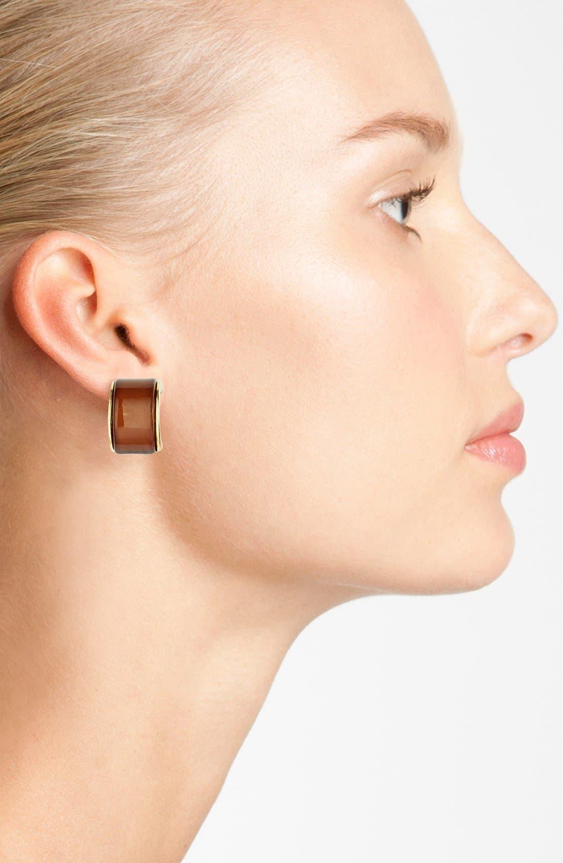 Alternate Image 2  - Anne Klein Small Clip Hoop Earrings